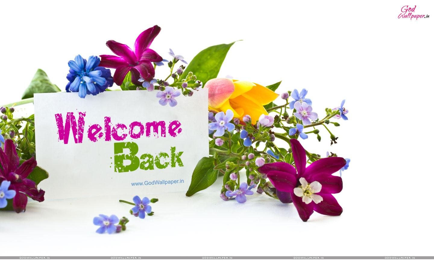Welcome Background Wallpaper