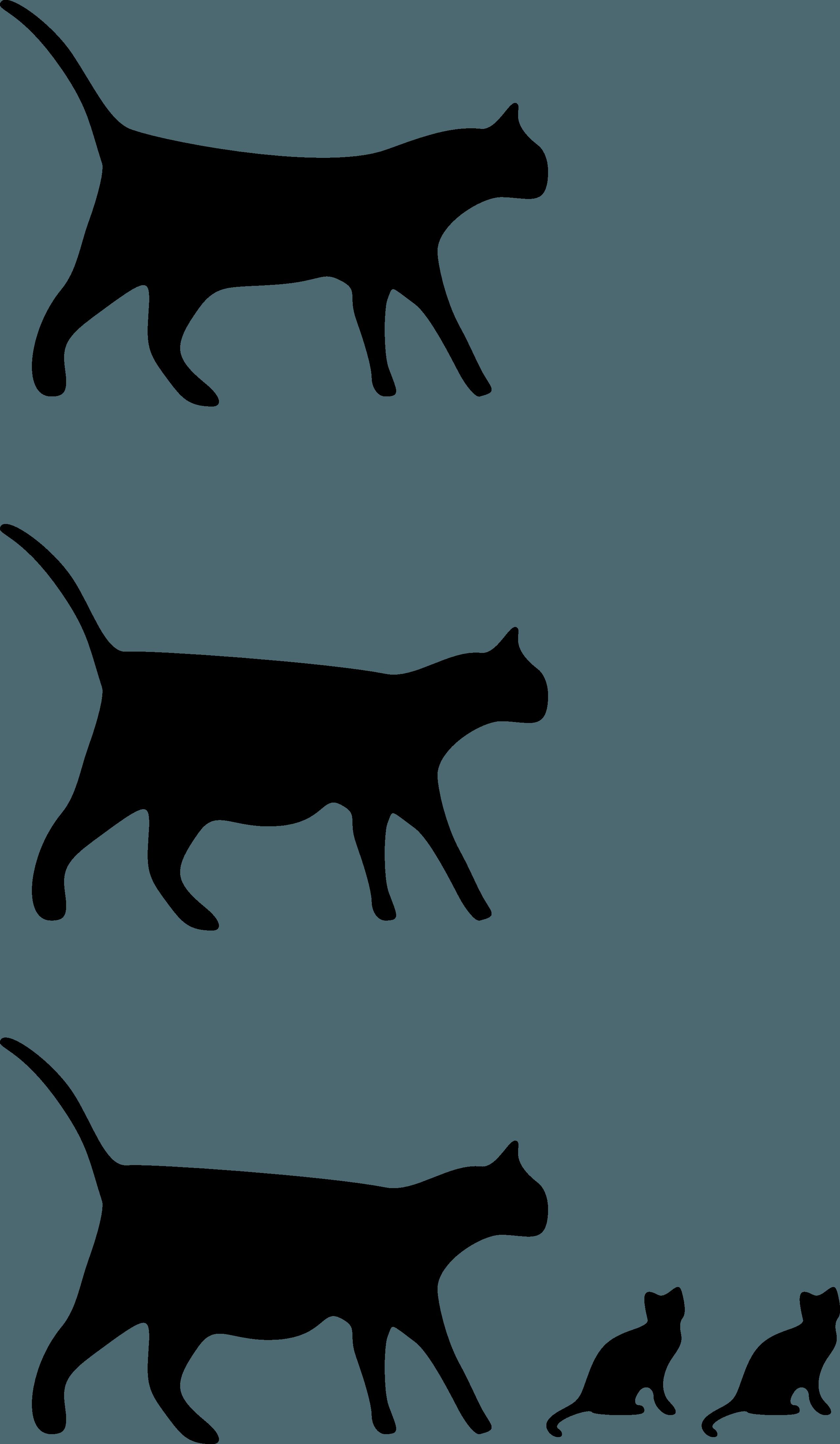 Cat Drawings Wallpapers Wallpaper Cave