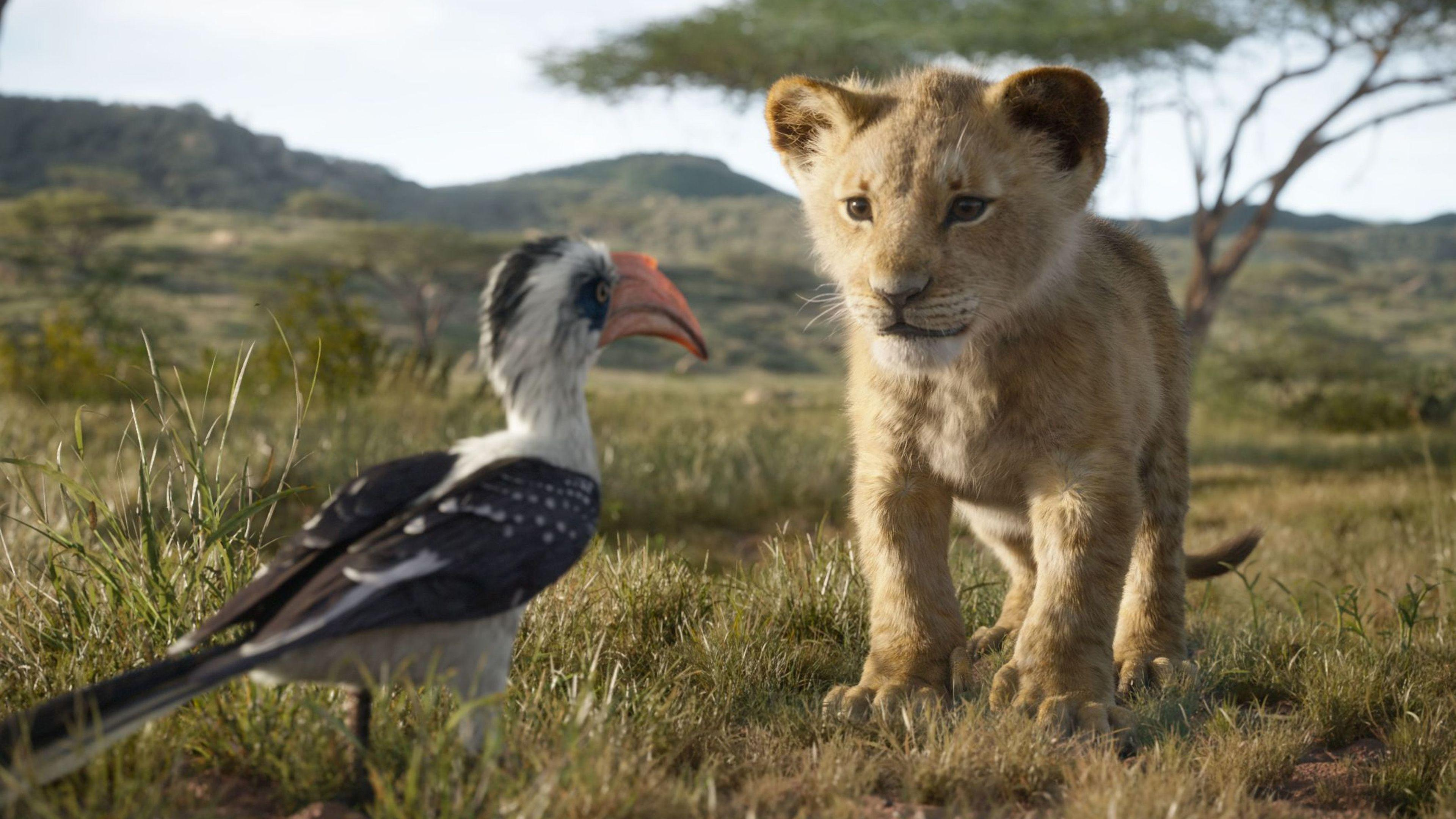 Wallpapers 4k The Lion King Simba 4k 2019 movies wallpapers, 4k