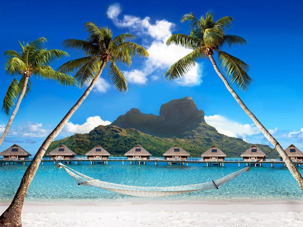 Tropical Paradise Wallpapers Wallpaper Cave