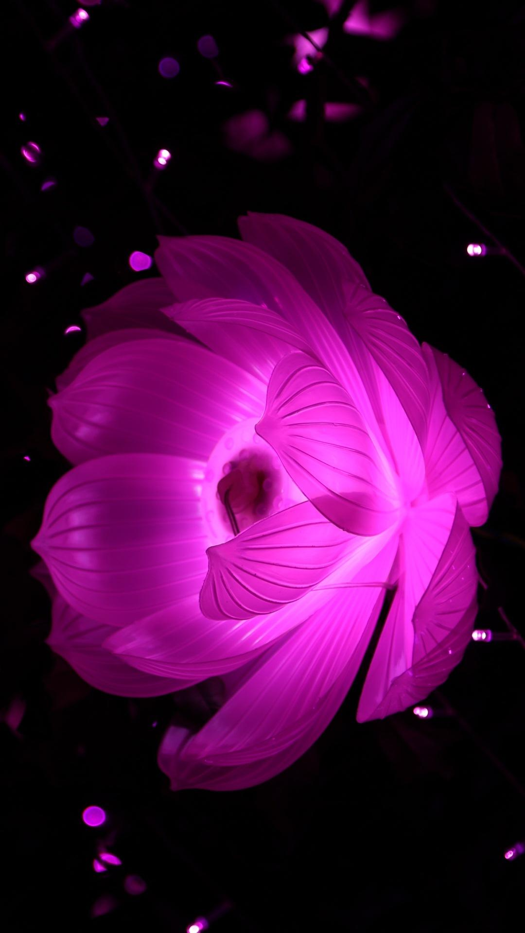 Pink And Black Flower Wallpapers , Wallpaper Cave