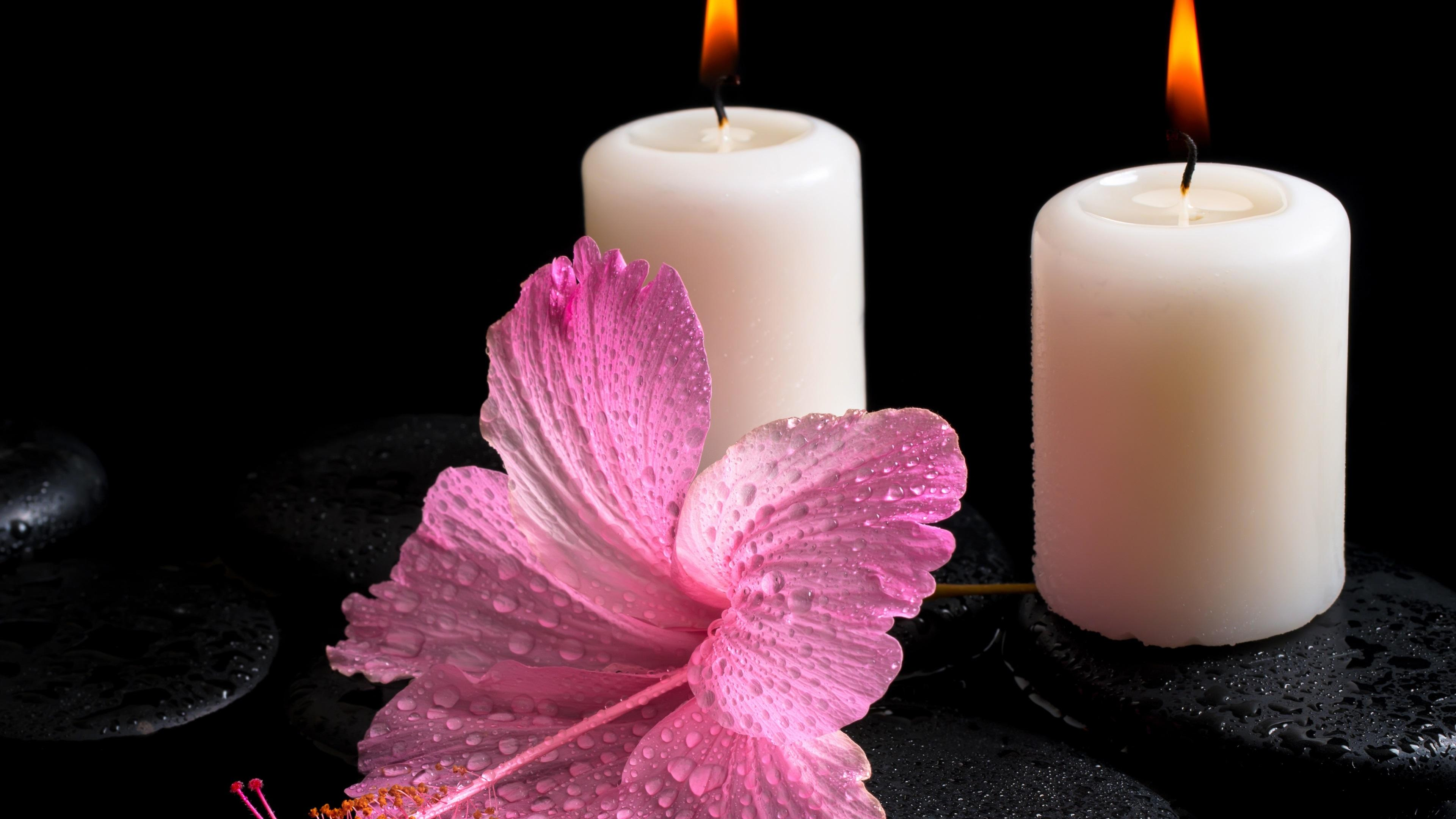 Flowers And Candle Lights Wallpapers Wallpaper Cave