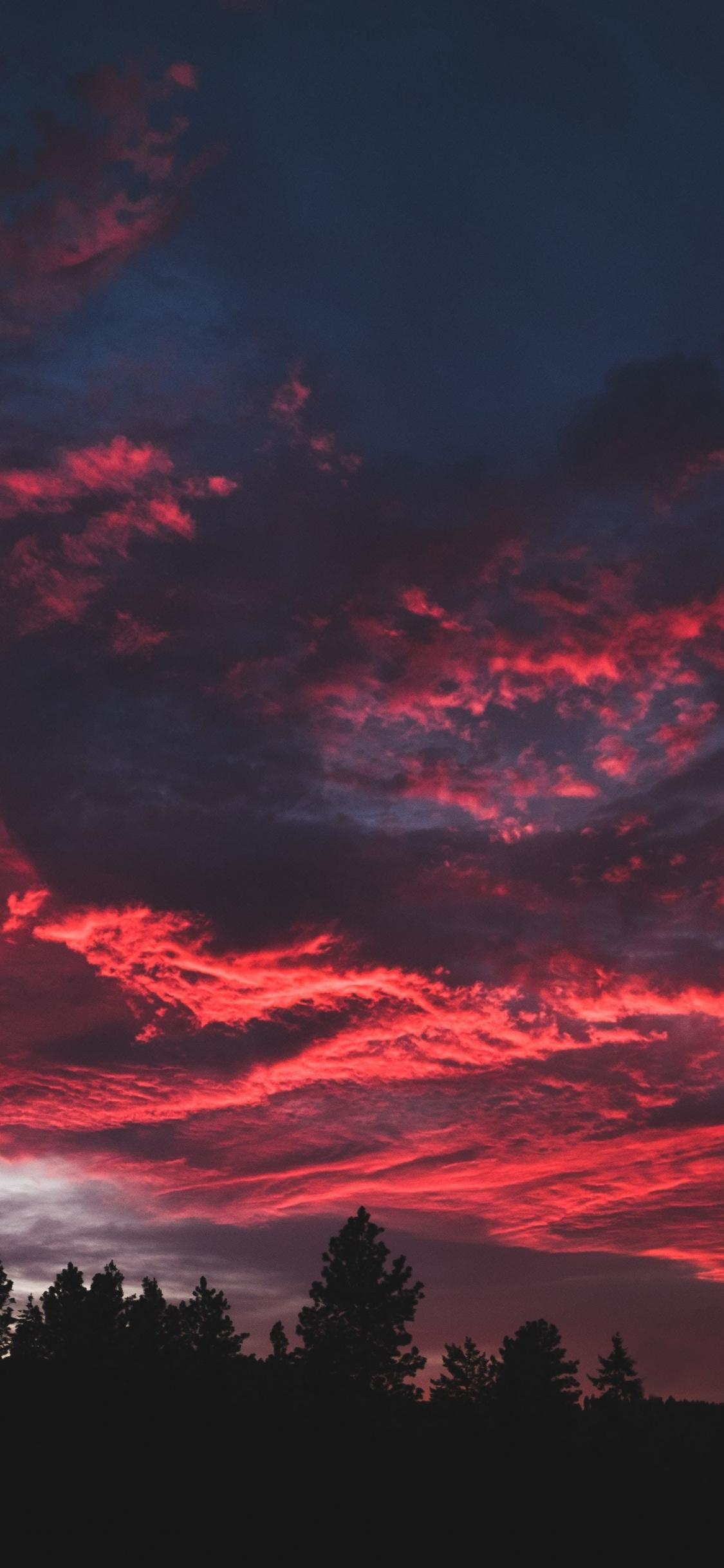 Download 1125x2436 wallpapers colorful, clouds, sunset, dark, tree