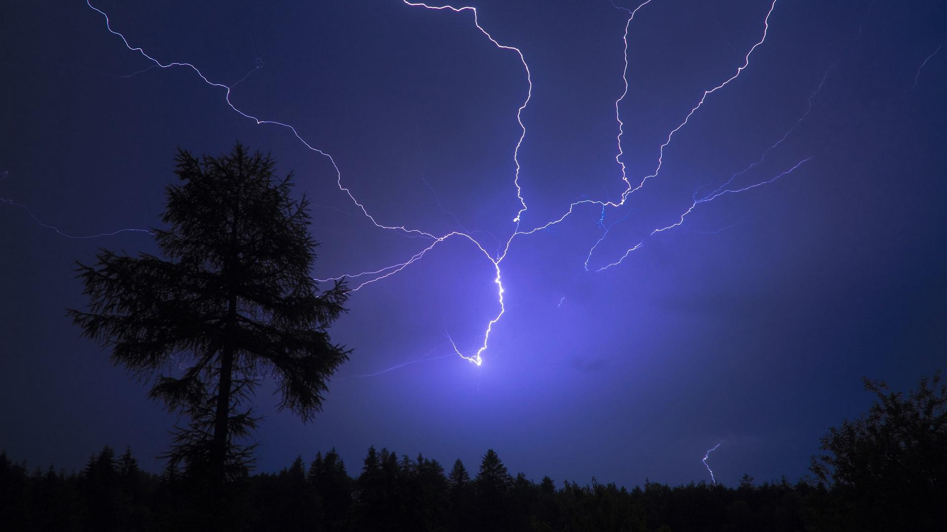 Download wallpapers 1920x1080 sky, thunder, storm, tree full hd, hdtv