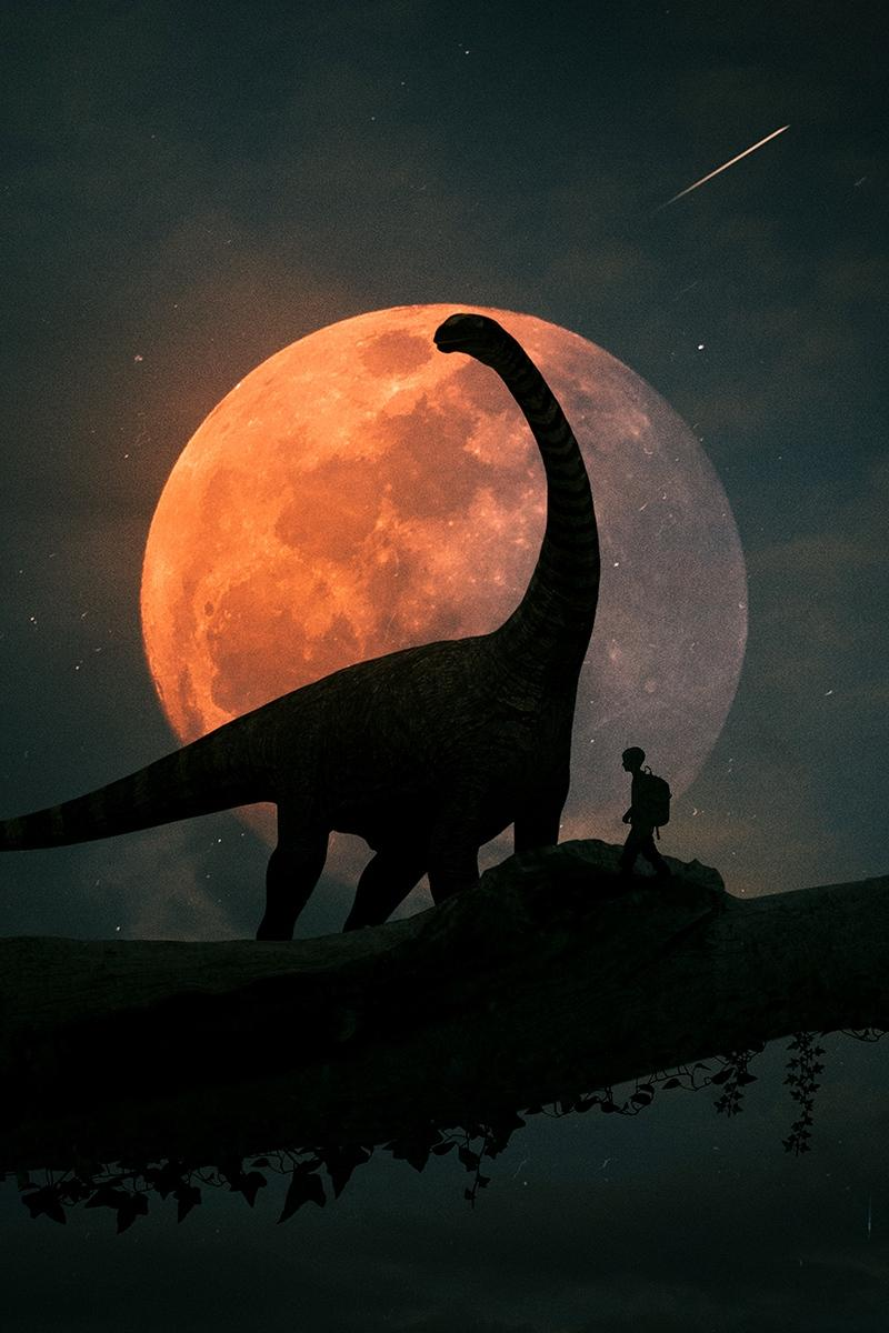 Download wallpapers 800x1200 silhouettes, dinosaur, planet, photoshop