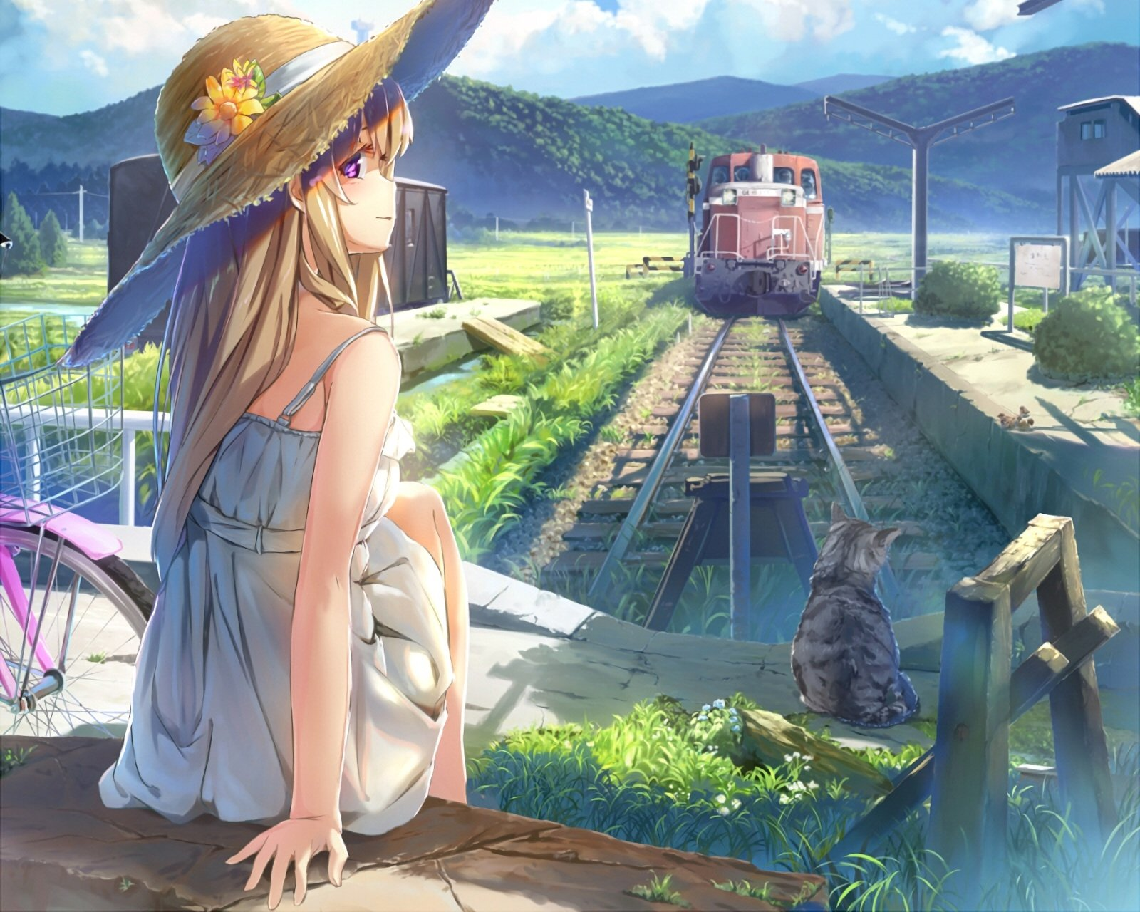 Download 1600x1280 Anime Girl, Summer Dress, Strawhat, Cat, Train