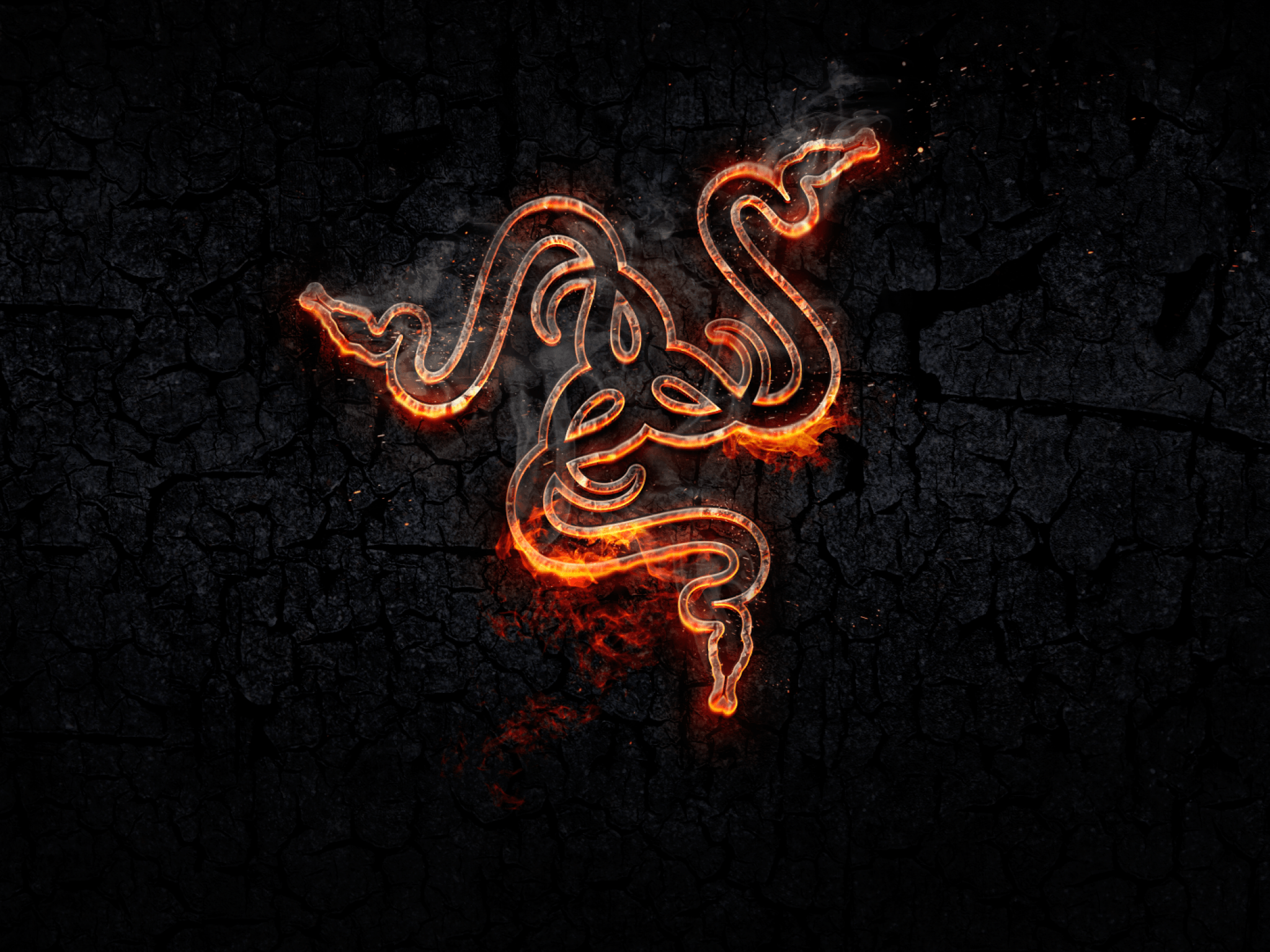 Download 2048x1536 Razer, Logo, Fire, Gaming, Snake Wallpapers for