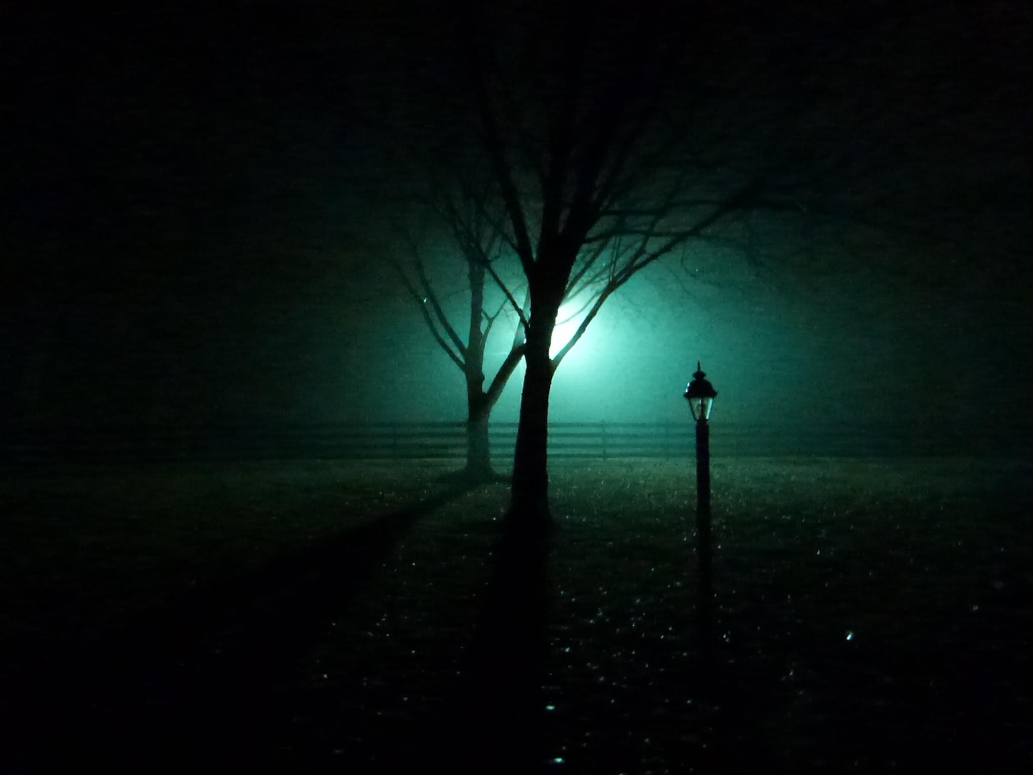 Foggy Night [2048x1536] : wallpapers