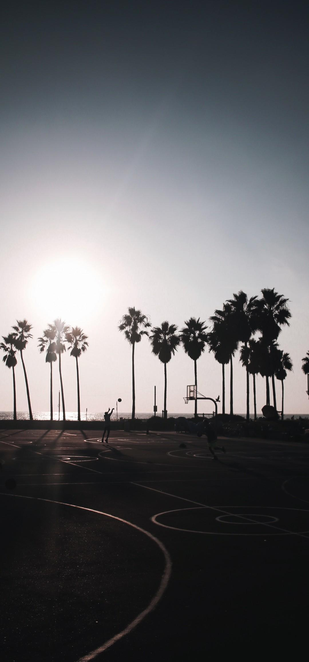 Download 1080x2310 Basketball, Palm Trees, Friends, Fun, Clear Sky