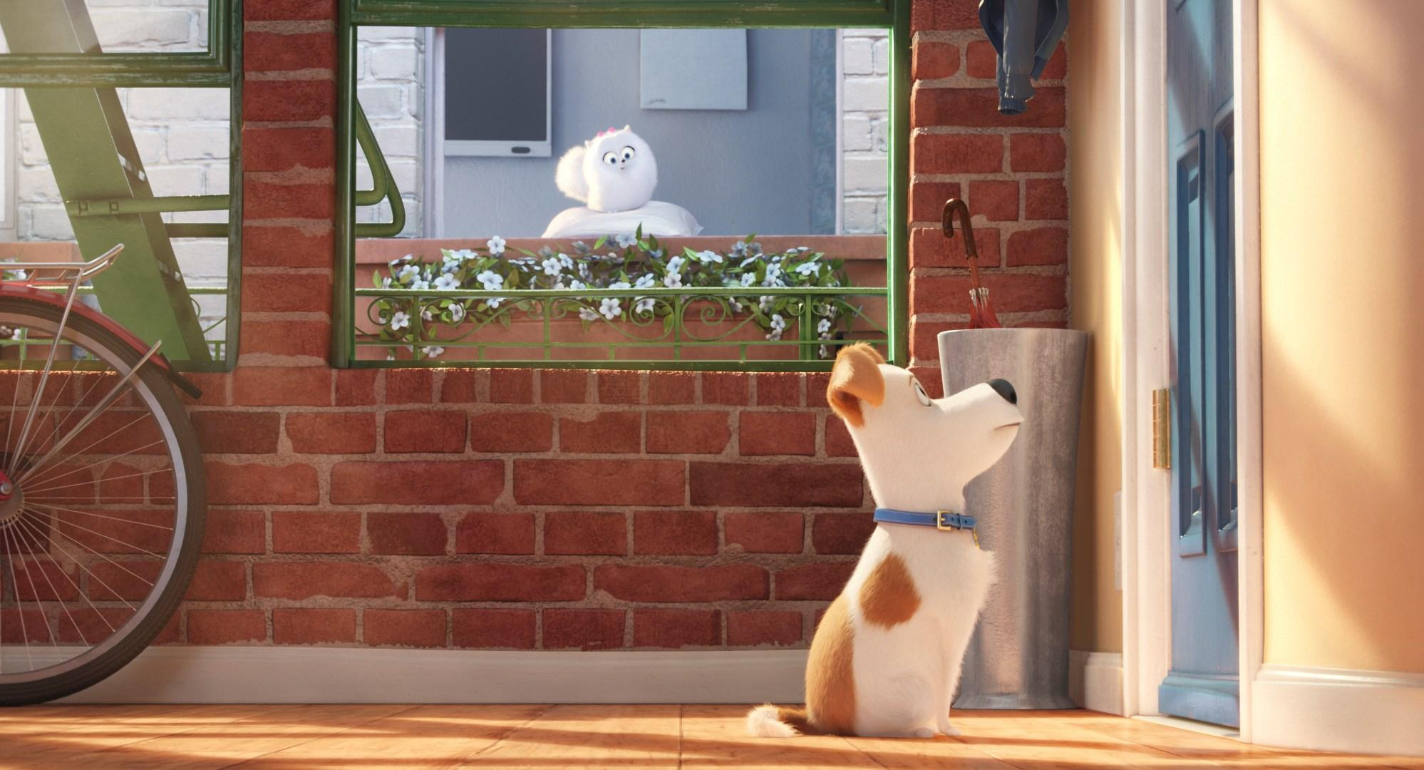 1488968 1998x1080 wallpapers desktop the secret life of pets