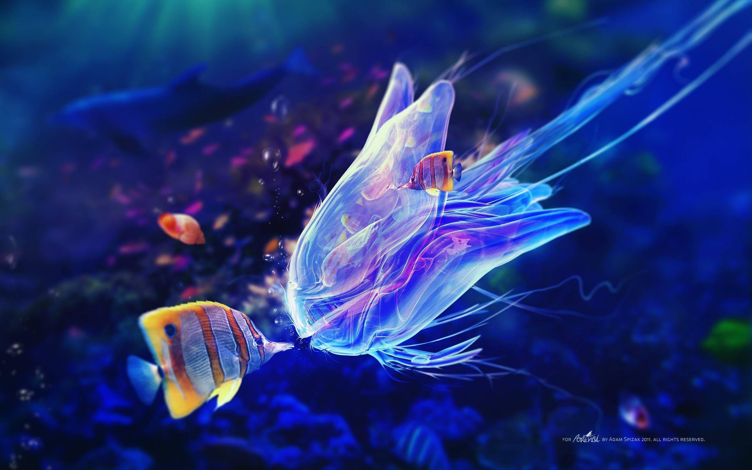 Life Underwater Wallpapers Wallpaper Cave