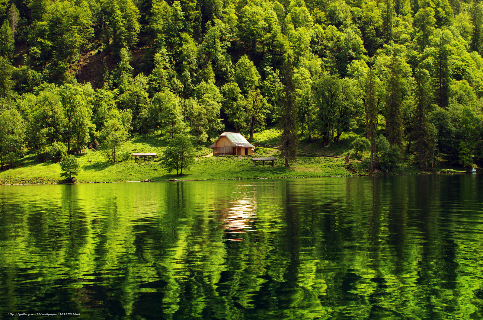 Lake Cabin Forest Wallpapers Wallpaper Cave