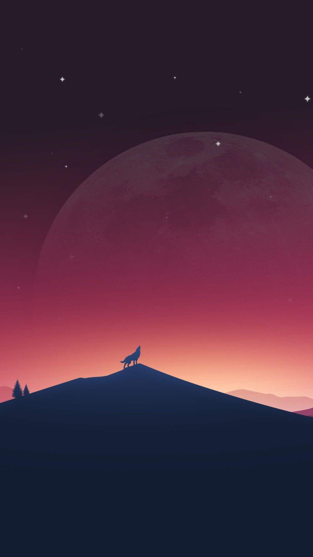 Download Wolf Howling At The Moon HD wallpapers for Xperia Z2