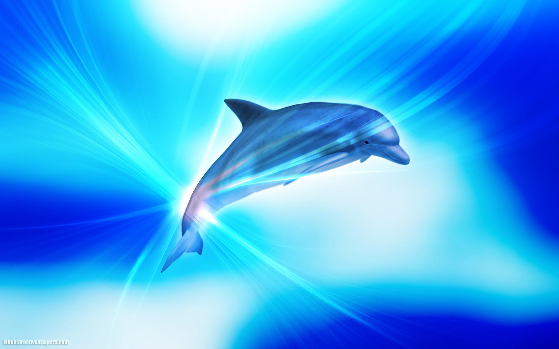 Abstract Dolphins Wallpapers Wallpaper Cave