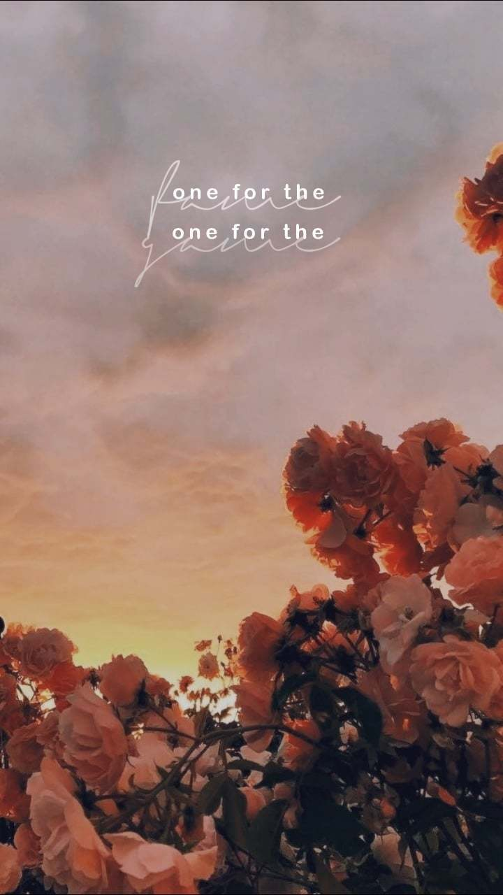 Stray Kids Aesthetic Quote Wallpapers Wallpaper Cave
