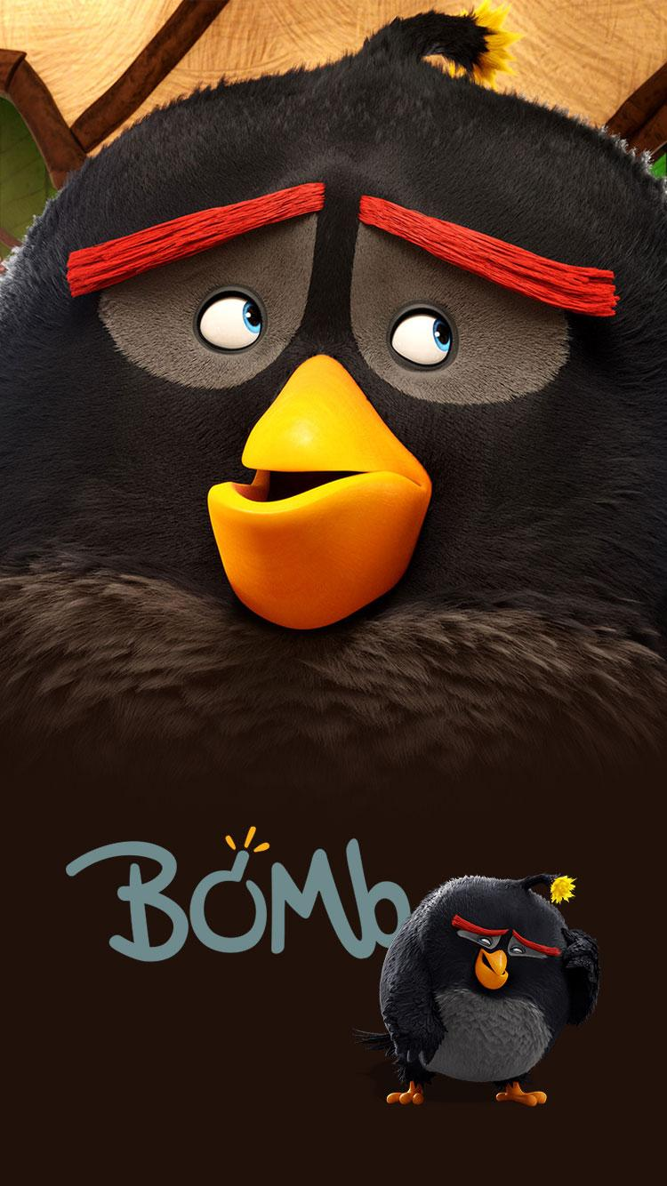 Angry Birds Iphone Wallpapers Wallpaper Cave