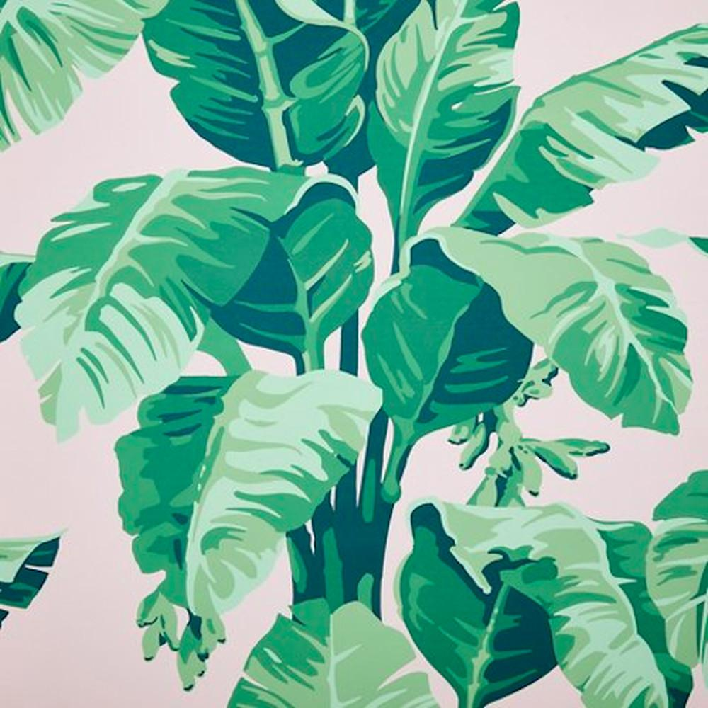 Restaurant Trend: Modern Tropical Wallpapers Patterns Are