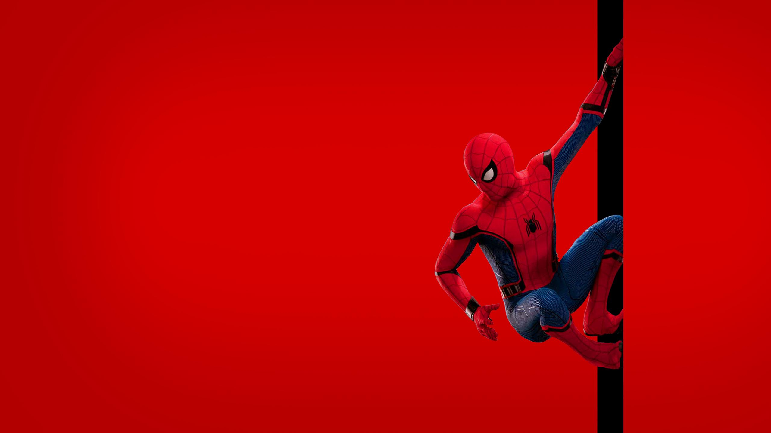 Best Movie Spiderman Wallpapers 2019 Wallpapers