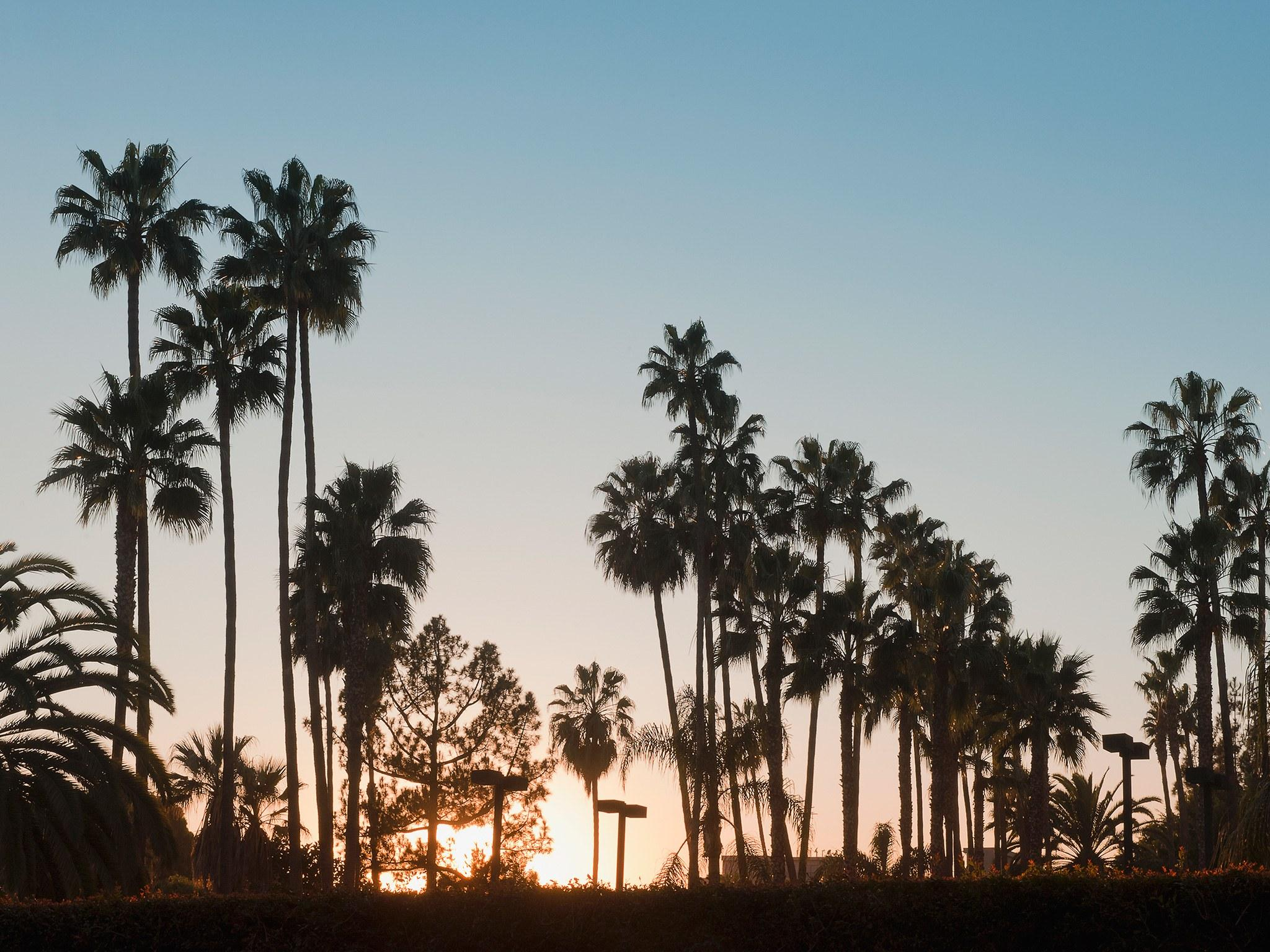 Venice Beach Los Angeles Wallpapers Wallpaper Cave