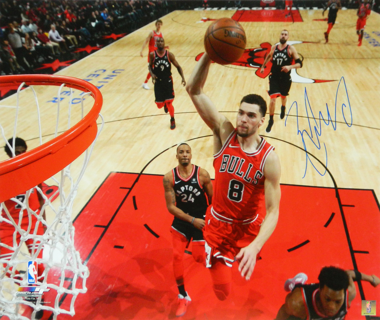 Zach LaVine Signed Chicago Bulls Action 16x20 Photo