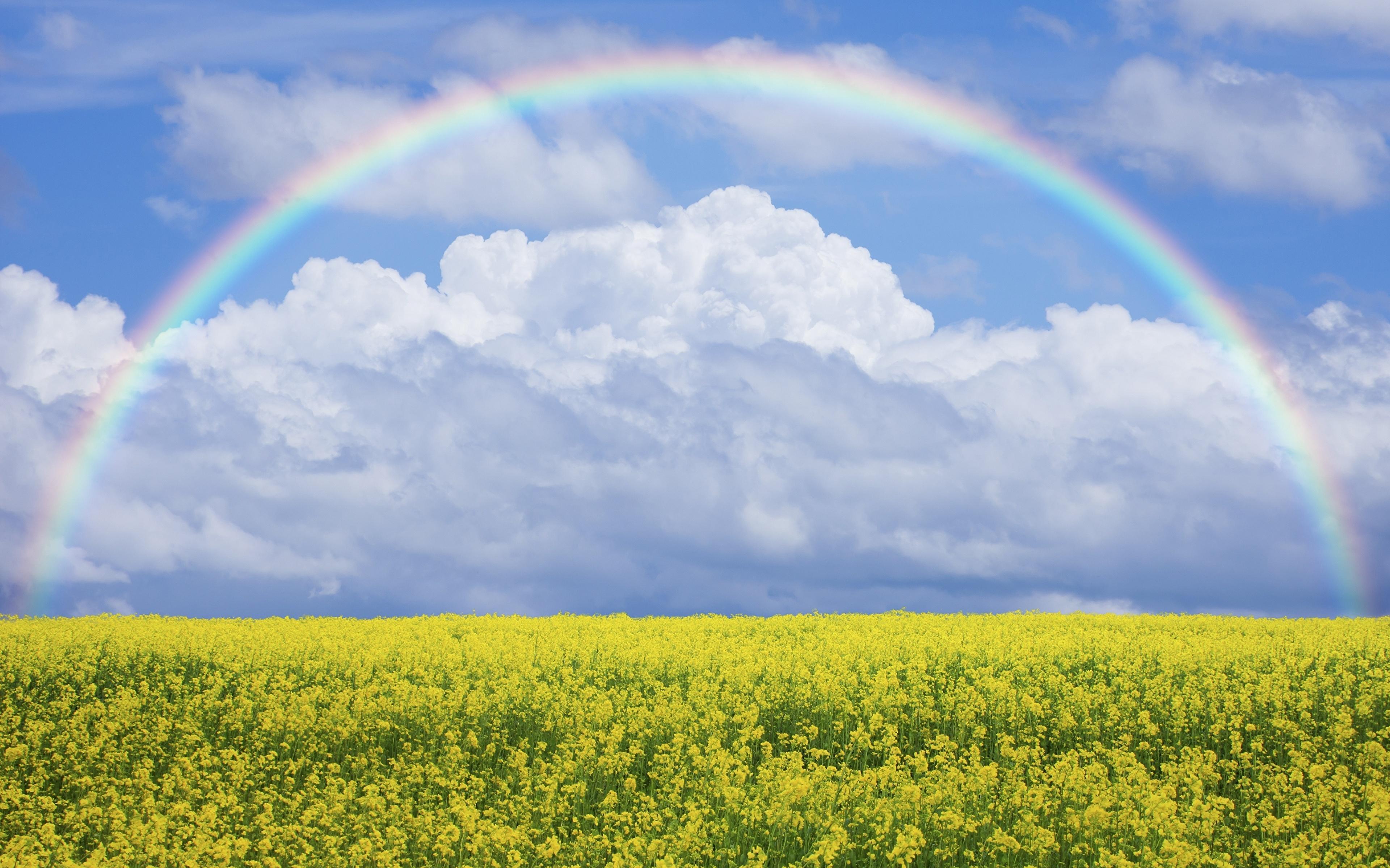 rainbow sky nature field wallpapers clouds backgrounds fields desktop wallpaperaccess