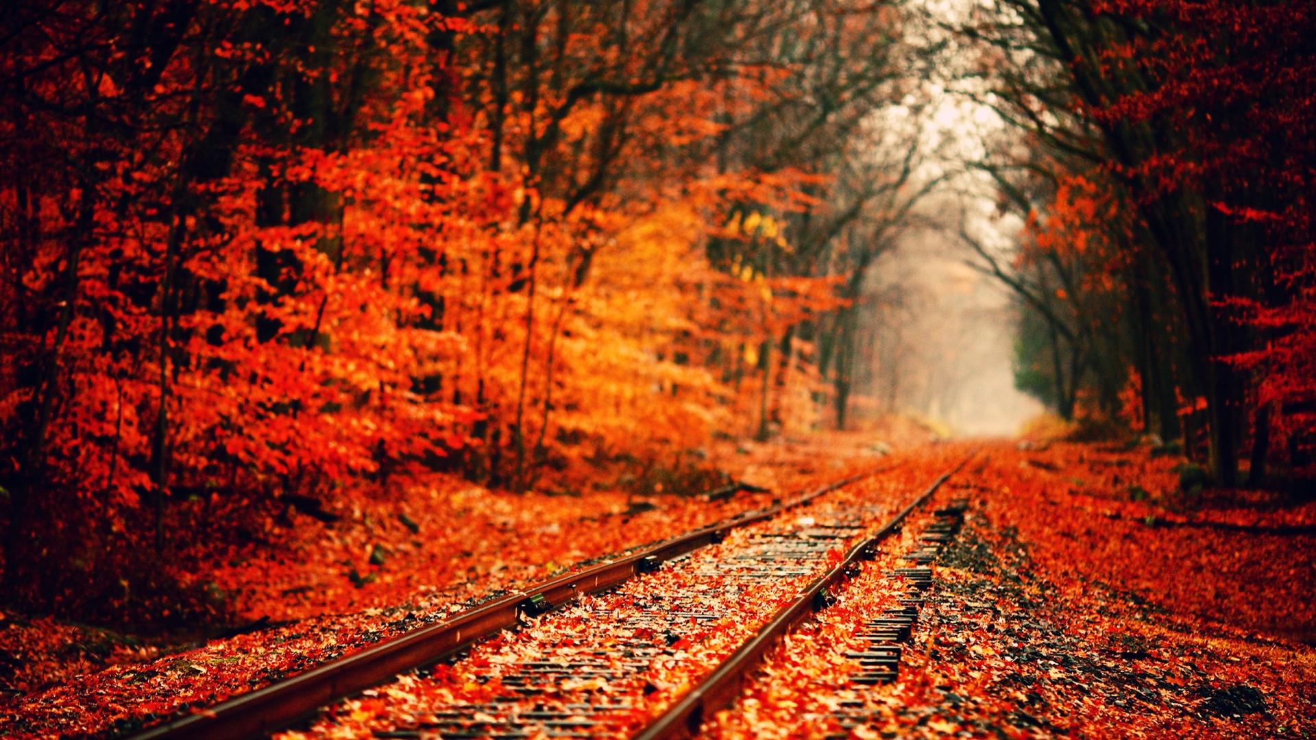 Autumn Season Hd Wallpapers Wallpaper Cave