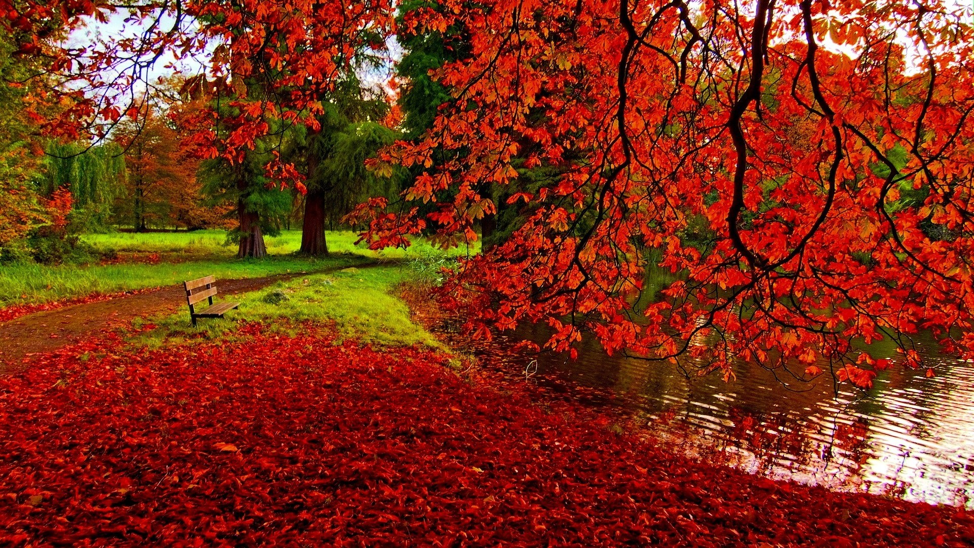 Colourful Autumn Wallpapers Wallpaper Cave