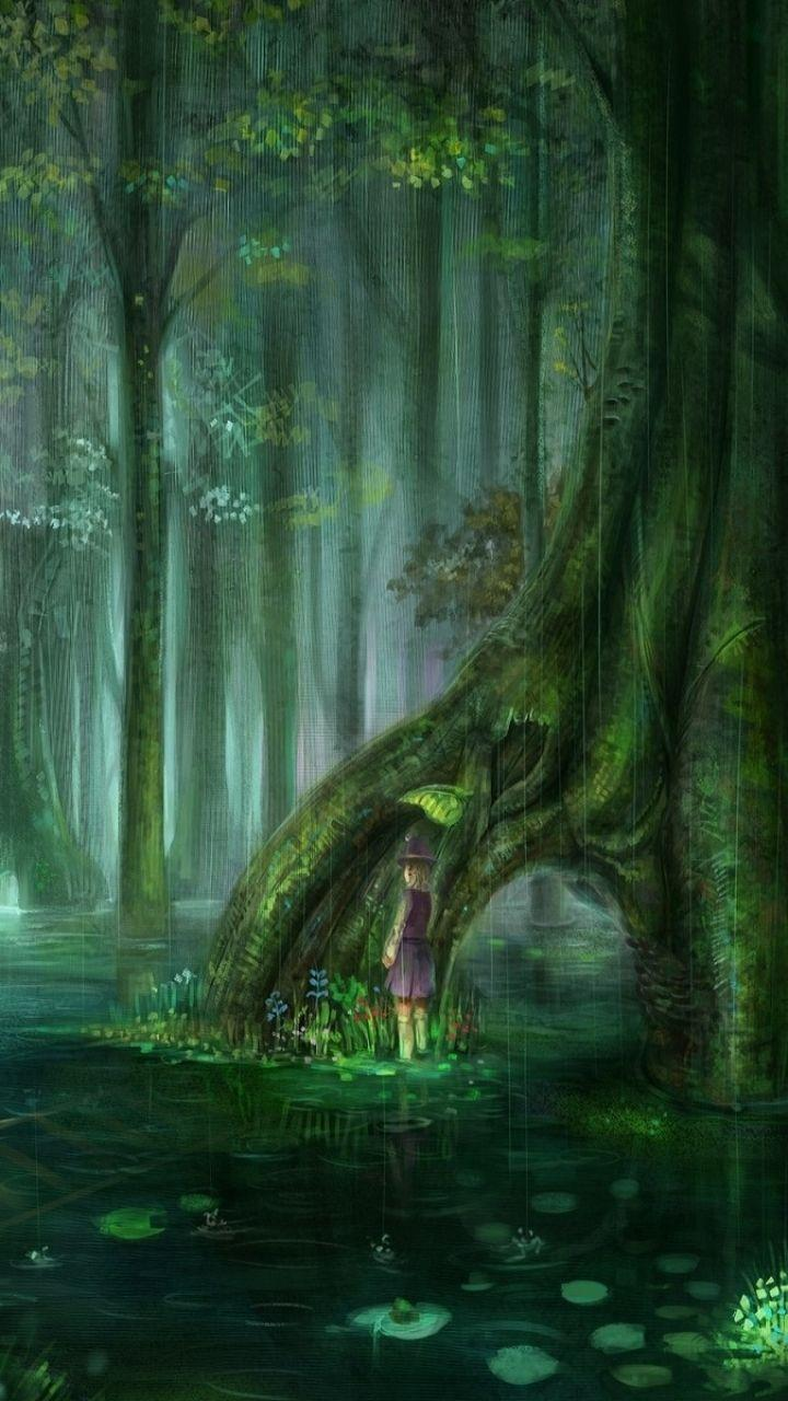 Old Trees Swamp Wallpapers Wallpaper Cave
