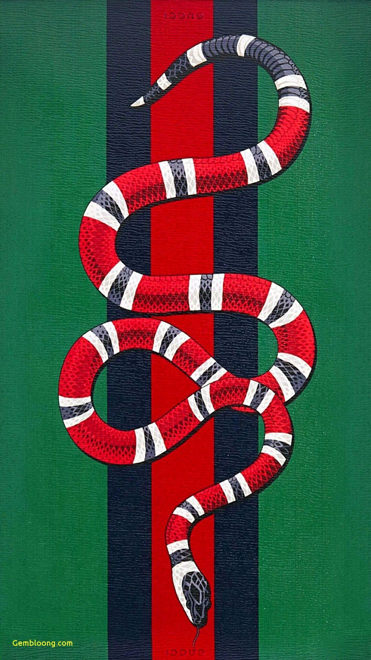 Gucci Iphone Wallpapers Wallpaper Cave