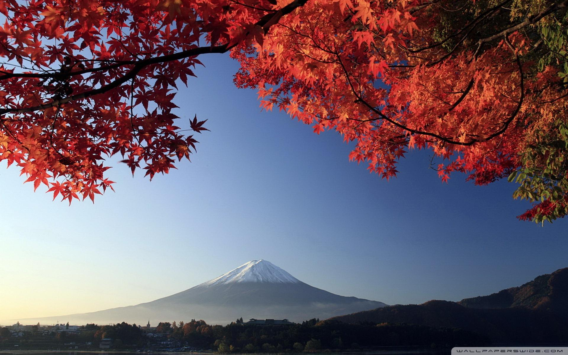 Japanese Autumn Wallpapers Wallpaper Cave