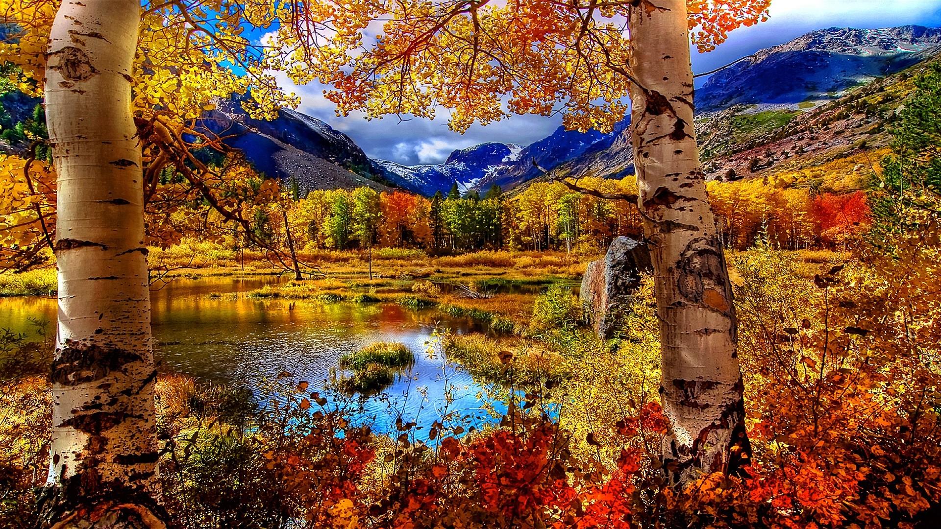 Autumn Scene Wallpapers Wallpaper Cave