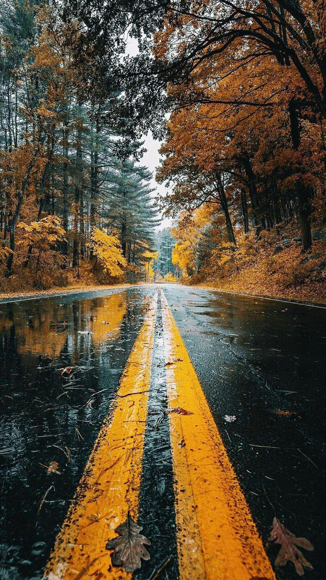 Rainy Days In Autumn Wallpapers Wallpaper Cave