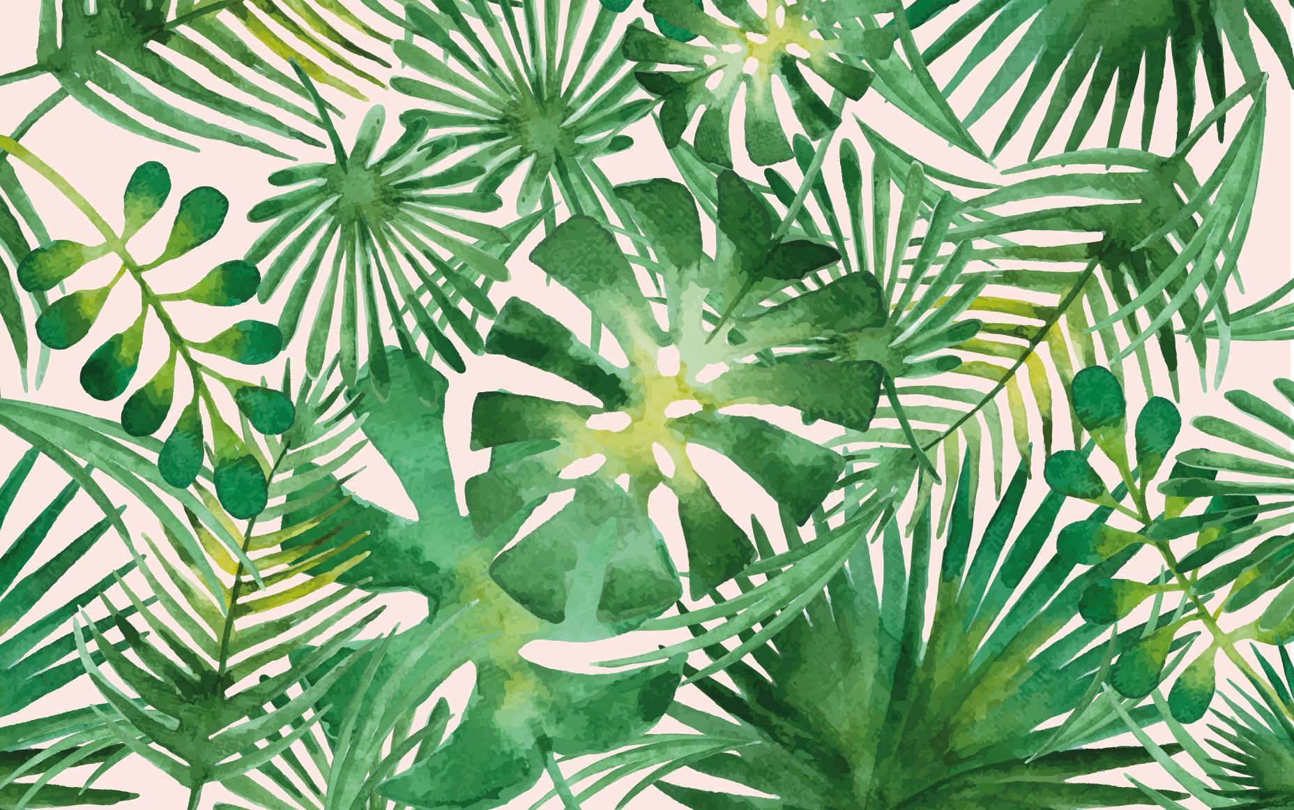 Palm Desktop Wallpapers Wallpaper Cave