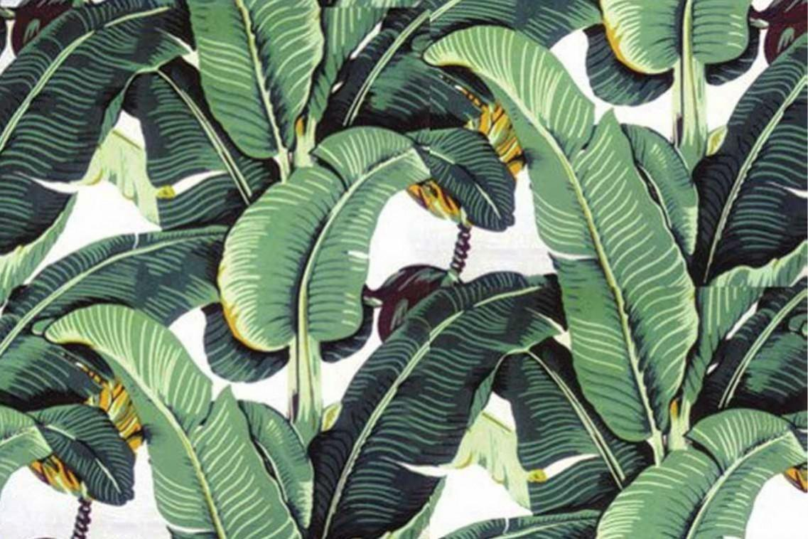 Palm Desktop Wallpapers Wallpaper Cave Are you looking for tropical leaves design images templates psd or png vectors files? palm desktop wallpapers wallpaper cave