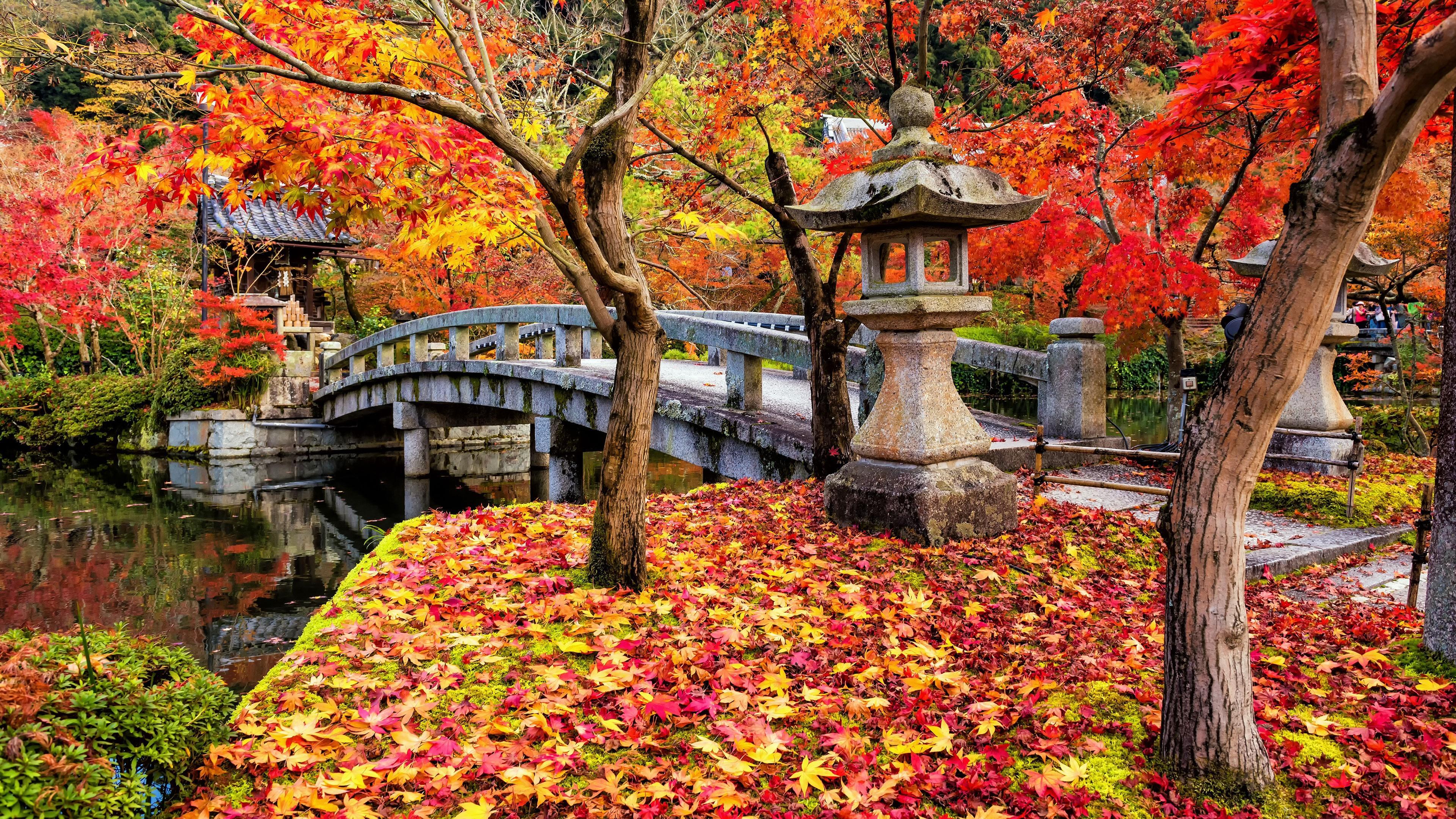 Japan Autumn HD Wallpapers - Wallpaper Cave