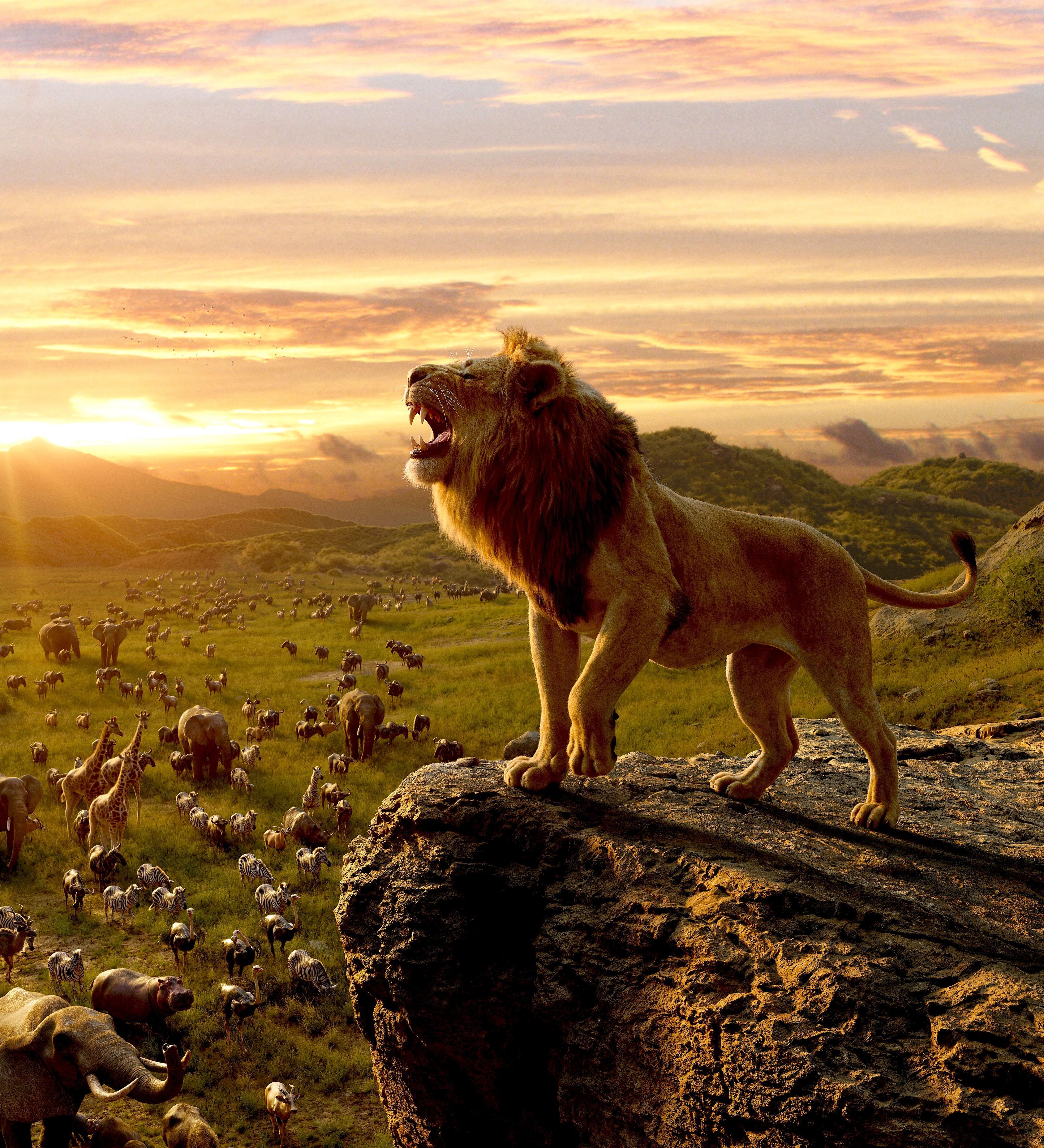 Lion King Roar Wallpapers - Wallpaper Cave