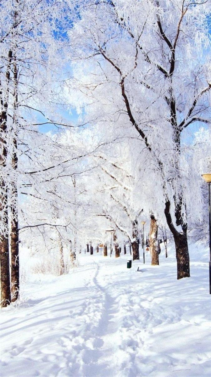 29 aesthetic winter wallpaper iphone