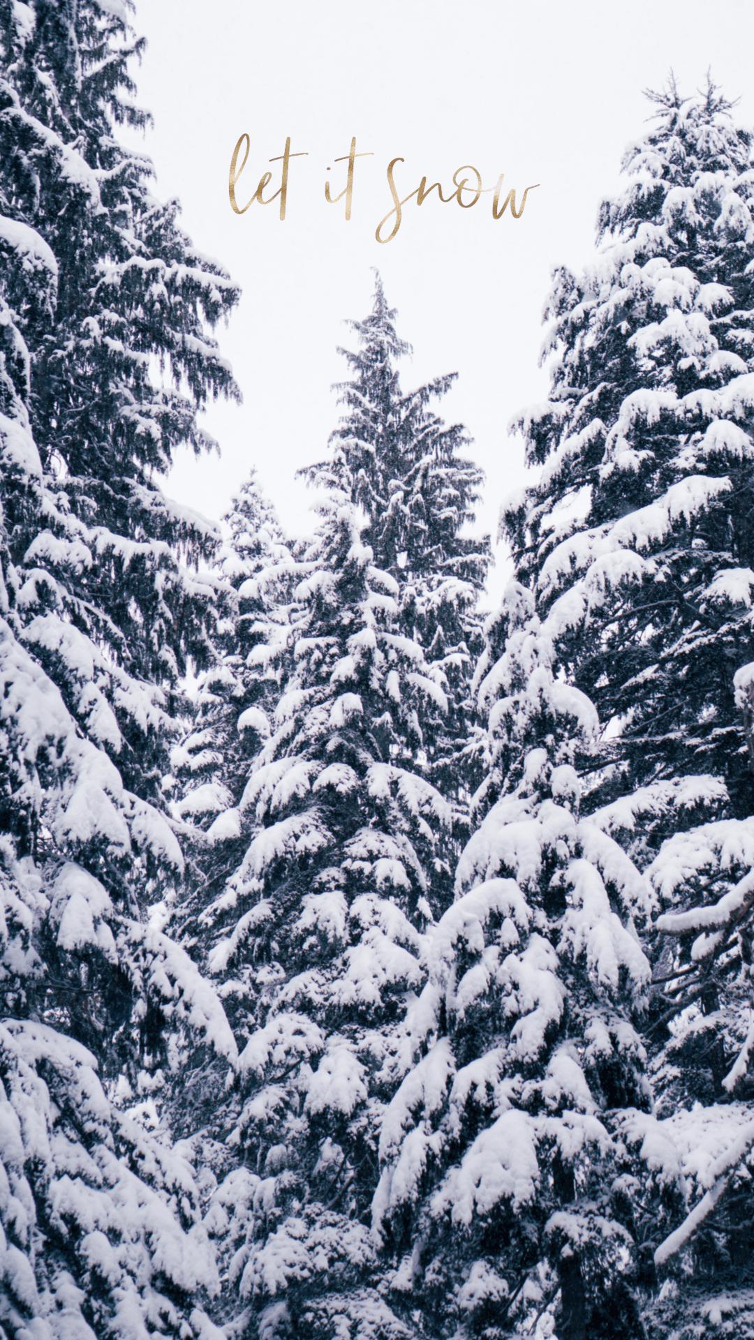 aesthetic winter wallpapers