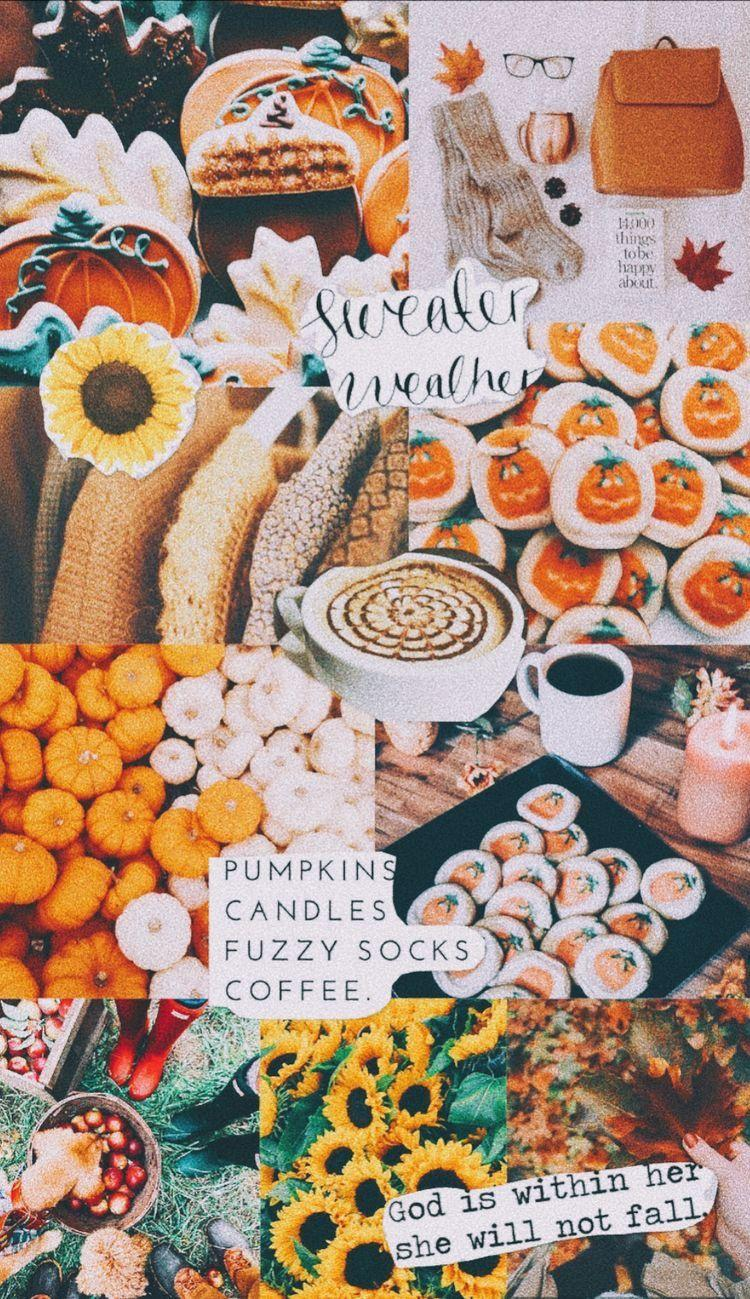 Fall Aesthetic Wallpapers - Wallpaper Cave