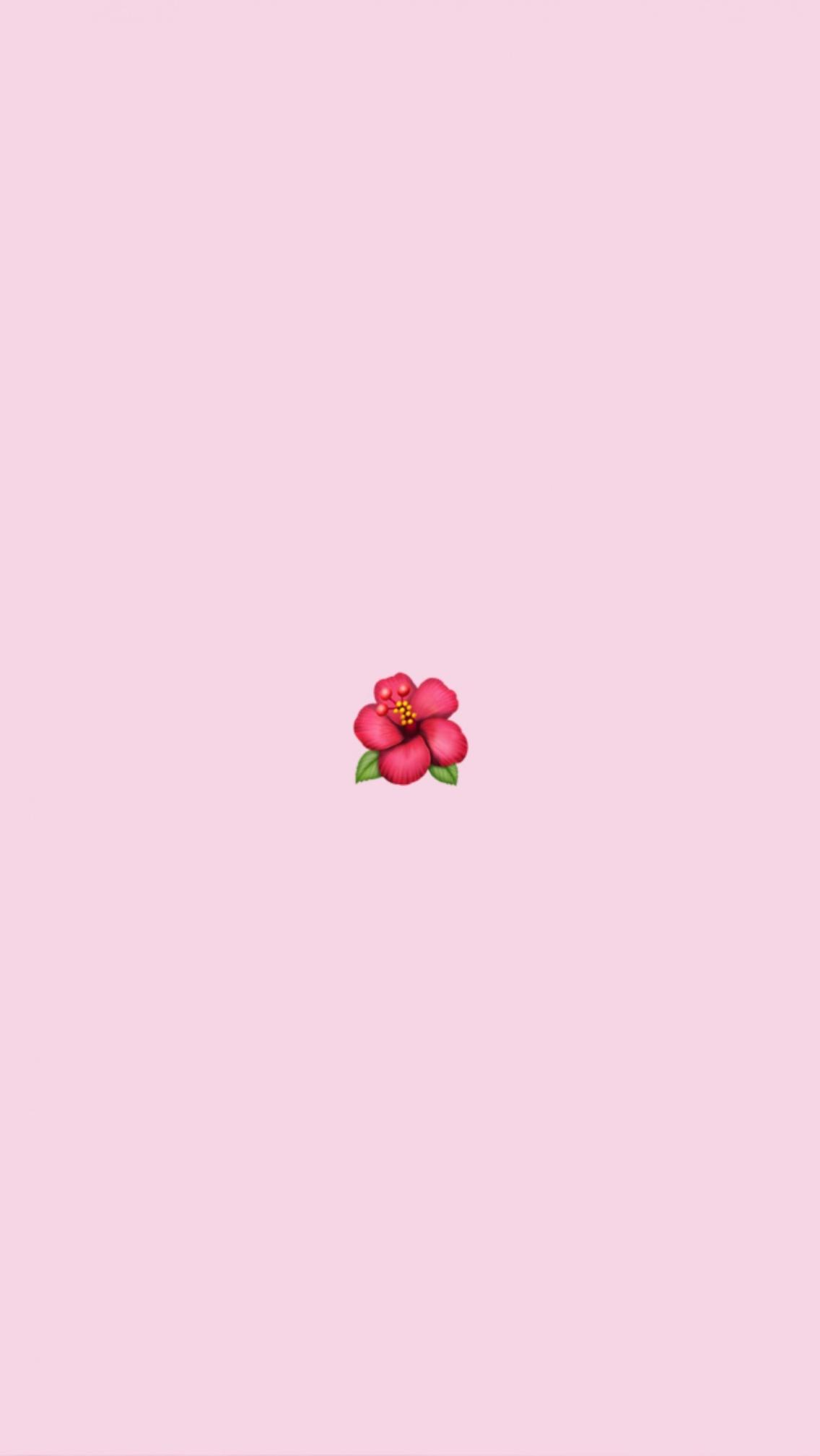 Cute Vsco Wallpapers Wallpaper Cave
