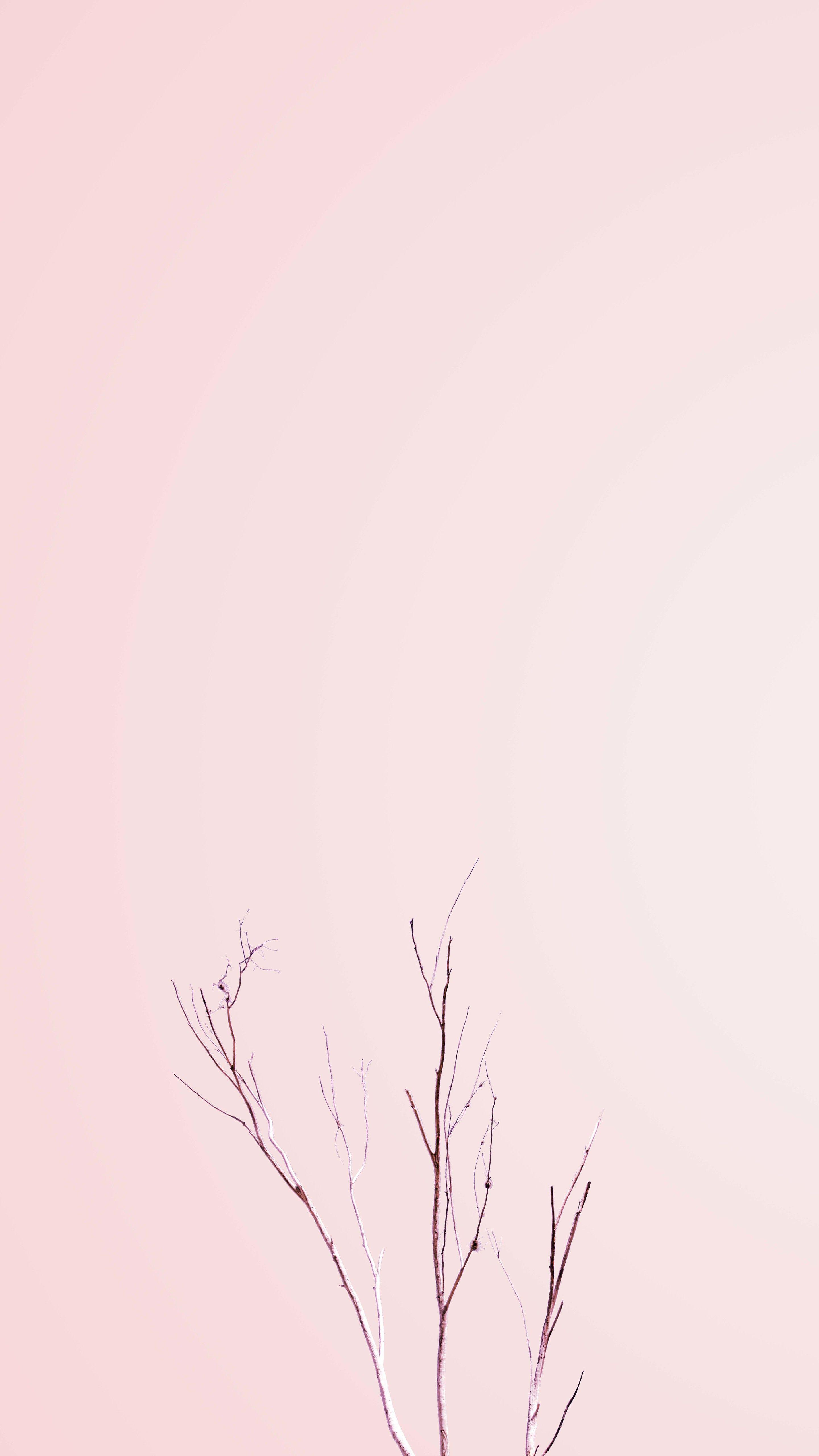 Minimalistic Iphone Pastel Wallpapers Wallpaper Cave
