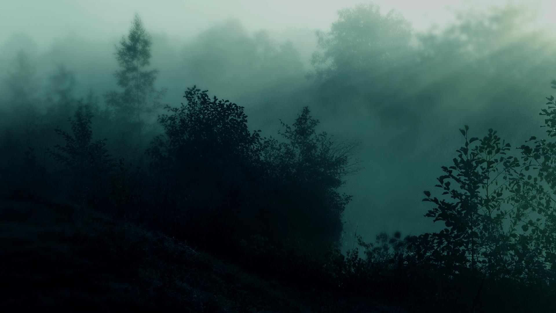Dark Nature Wallpapers