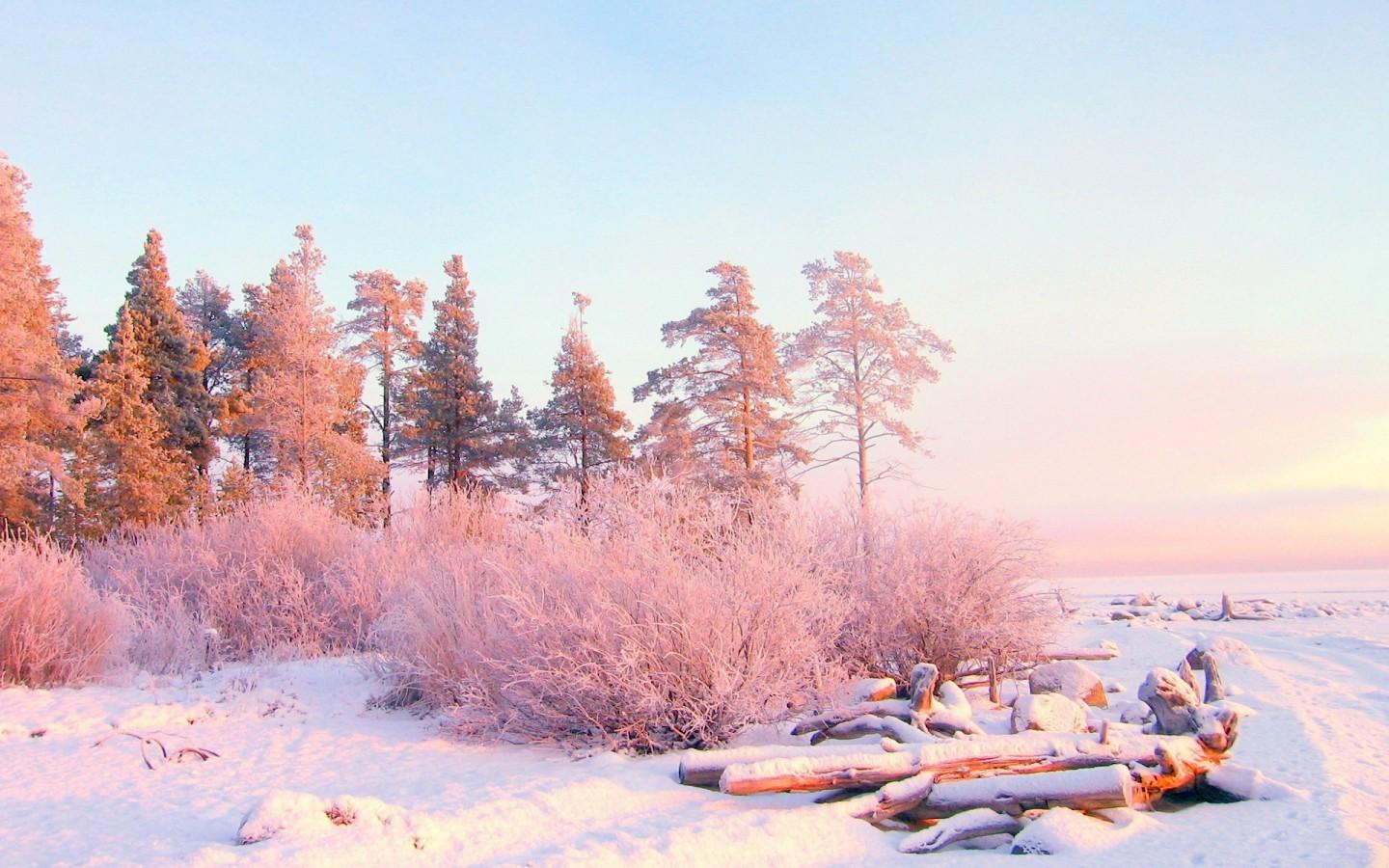 Encyclopedia Natural Aesthetic Snow Wallpapers
