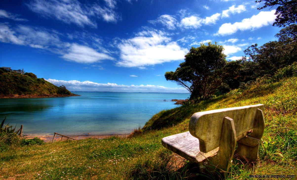 Lonely Bench Nature Wallpapers