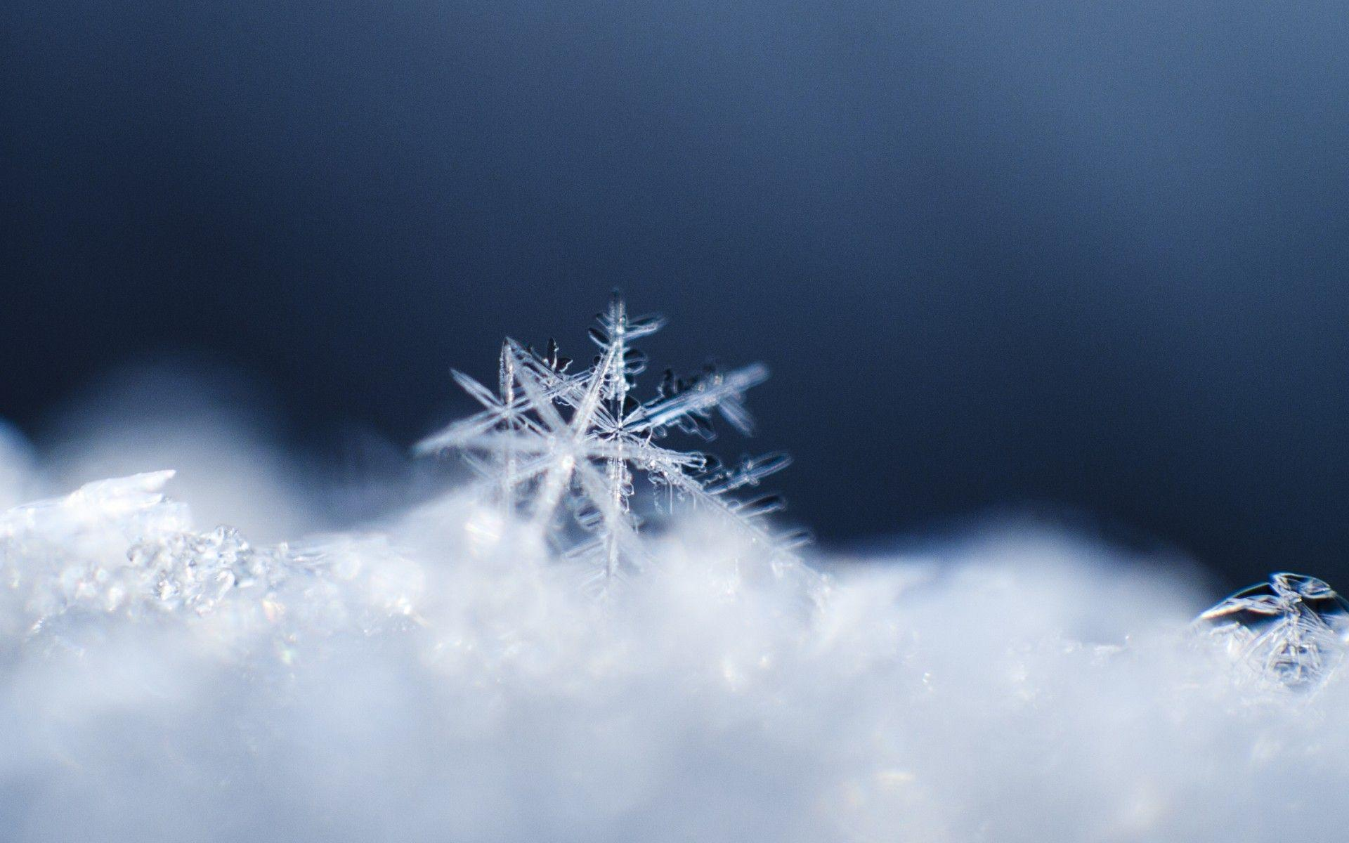 winter snow snowflakes macro / 1920x1200 Wallpapers
