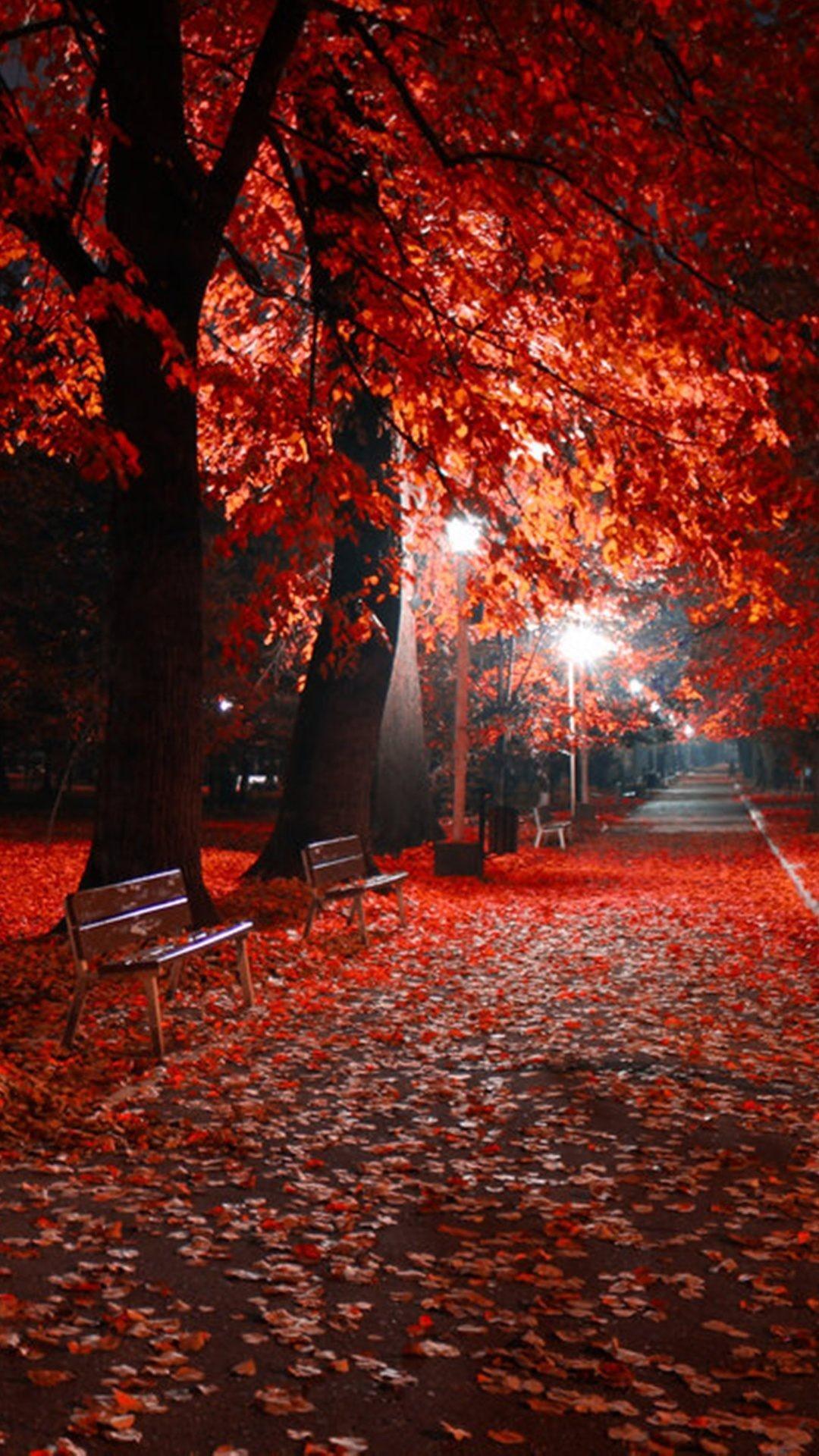 foto de Autumn Night Wallpapers - Wallpaper Cave