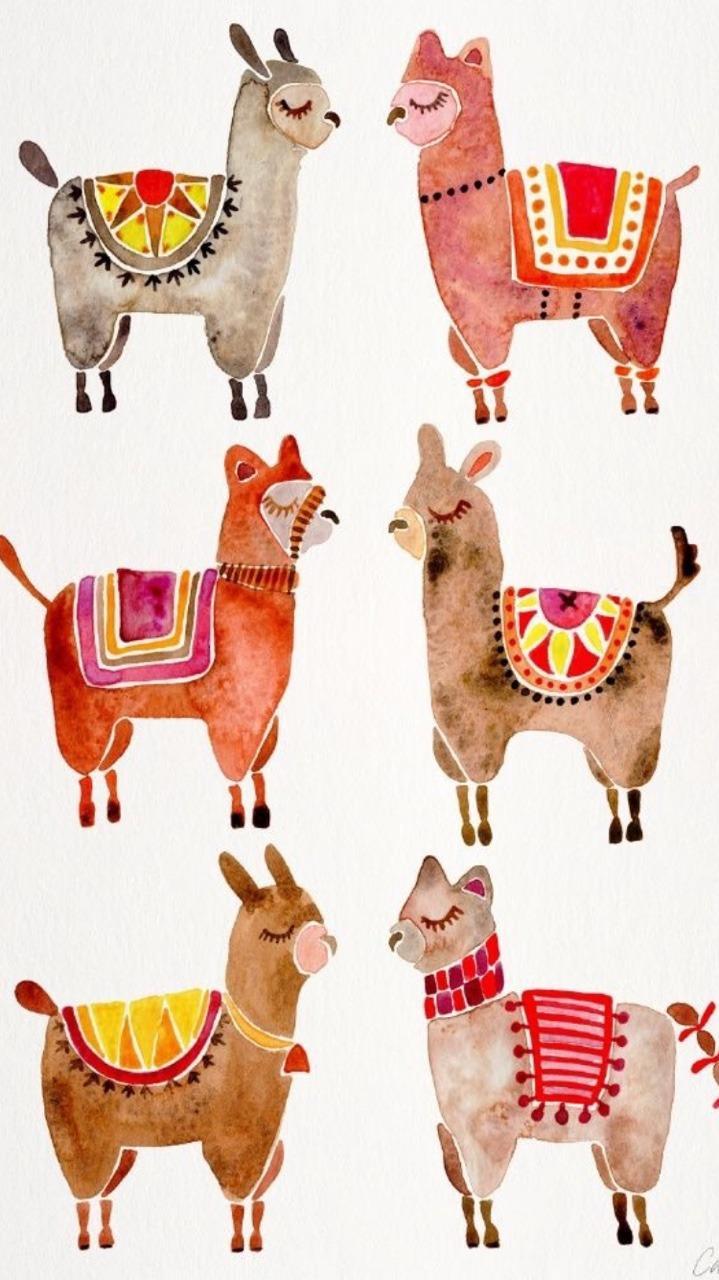 Kawaii Alpaca Wallpapers Wallpaper Cave