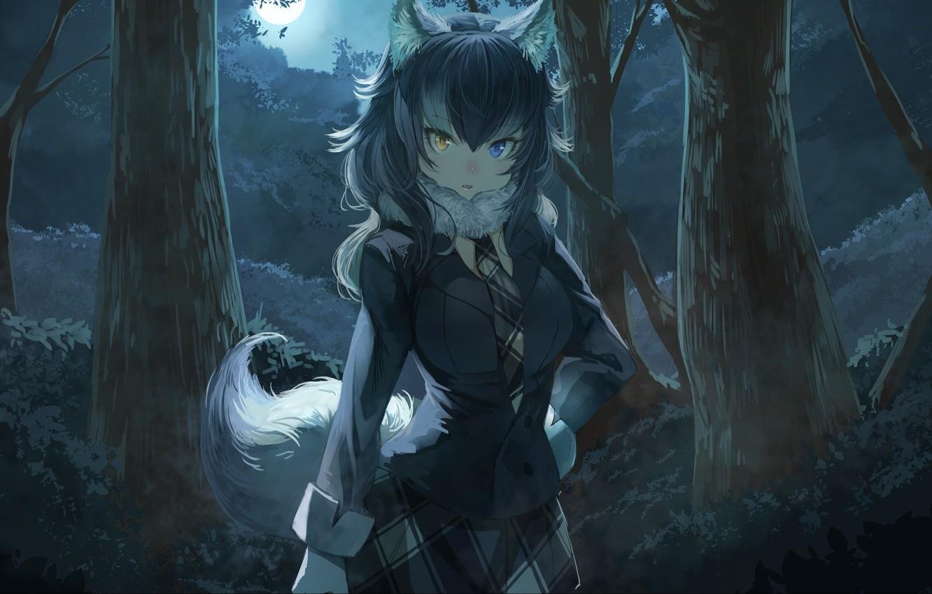Anime Wolf Girl Wallpapers - Wallpaper Cave