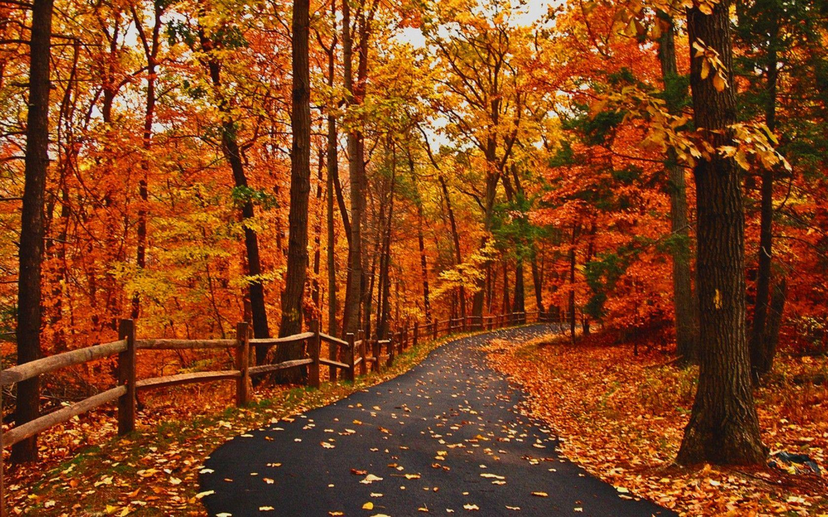 Peaceful Autumn Scene Wallpapers Wallpaper Cave