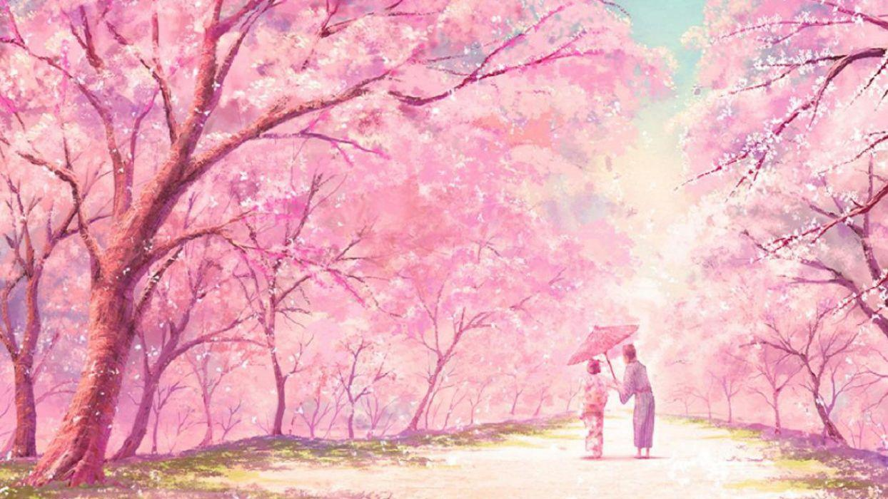 cherry blossom anime wallpapers